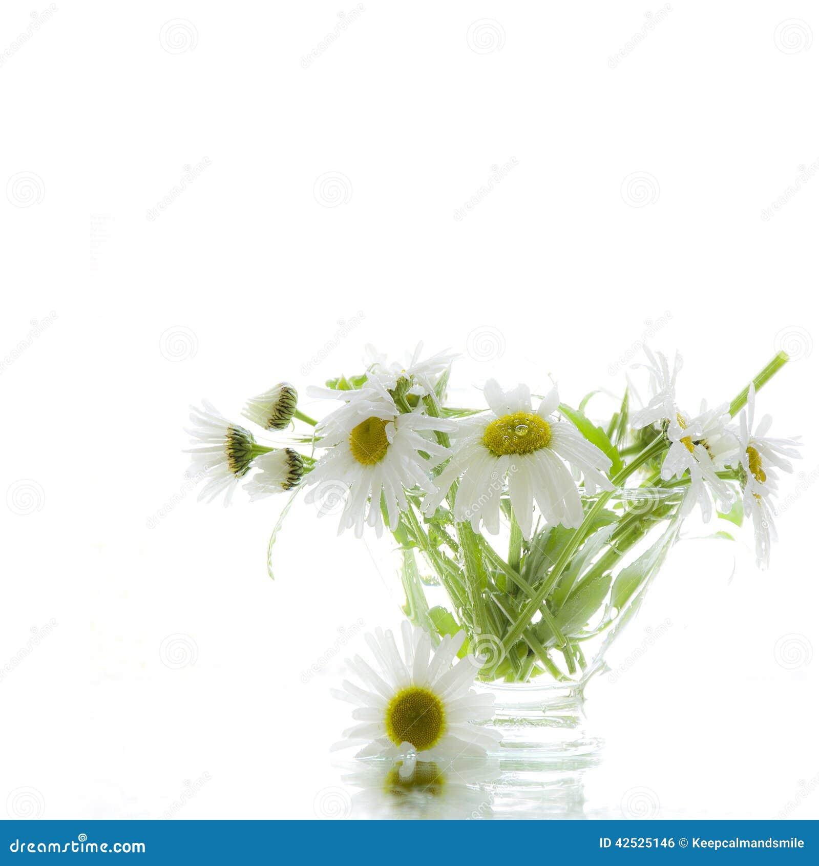 Kwiaty w wazie szkło
