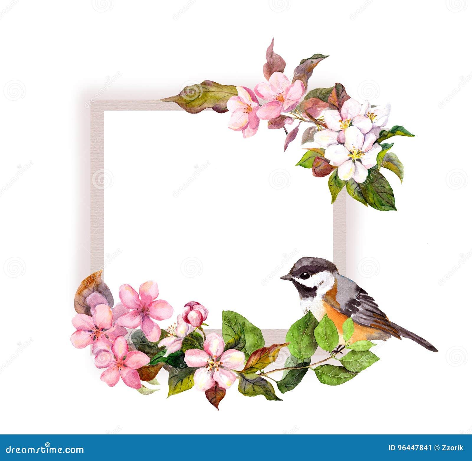 Kwiecista rama kwiaty i piękny ptak dla wewnętrznego projekta - Akwareli granica dla teksta