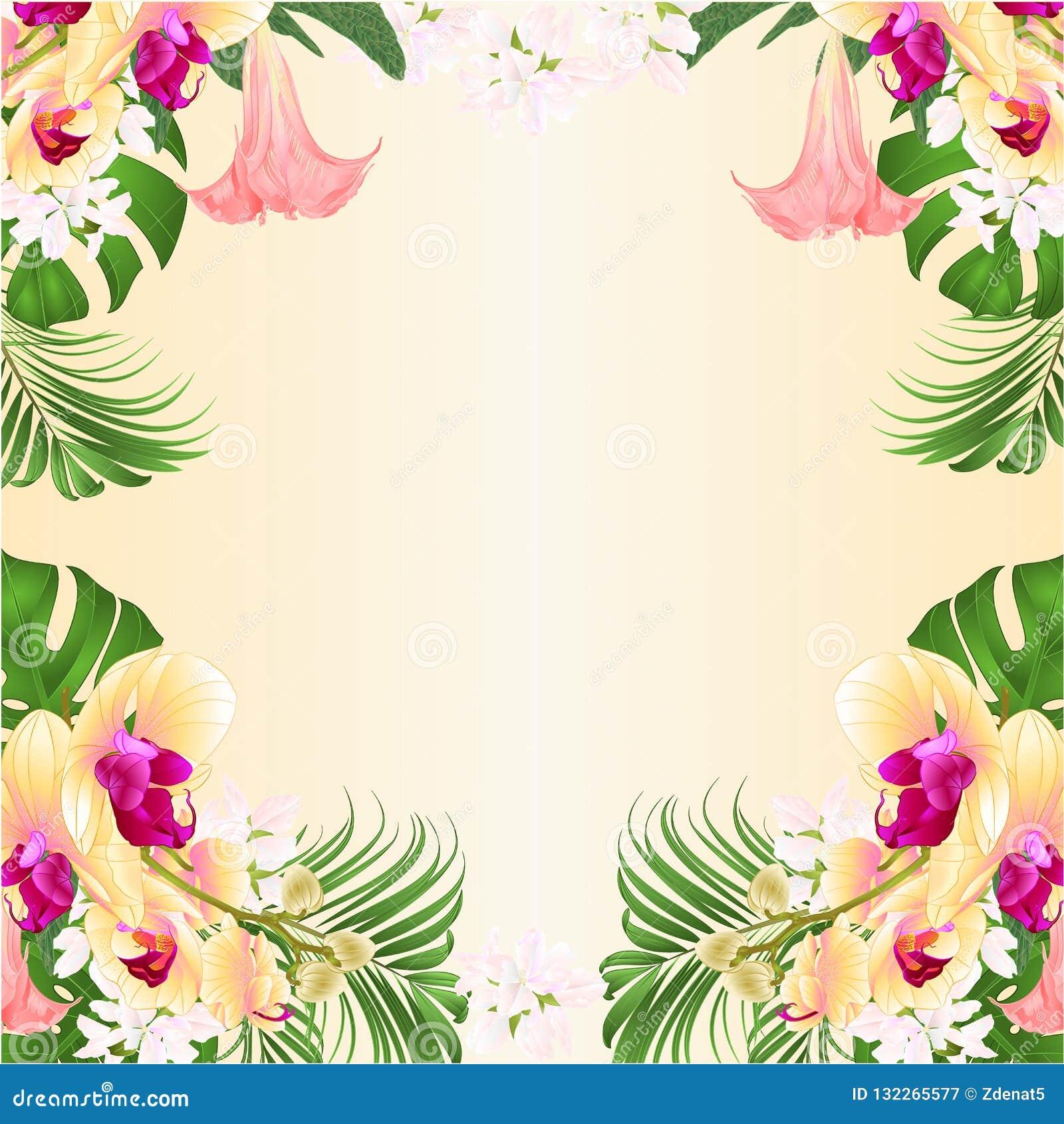 Kwiecisty ramowy tło z ropical kwiatów kwiecistym przygotowania z piękną żółtą storczykową palmą, filodendronem i Brugmansia,