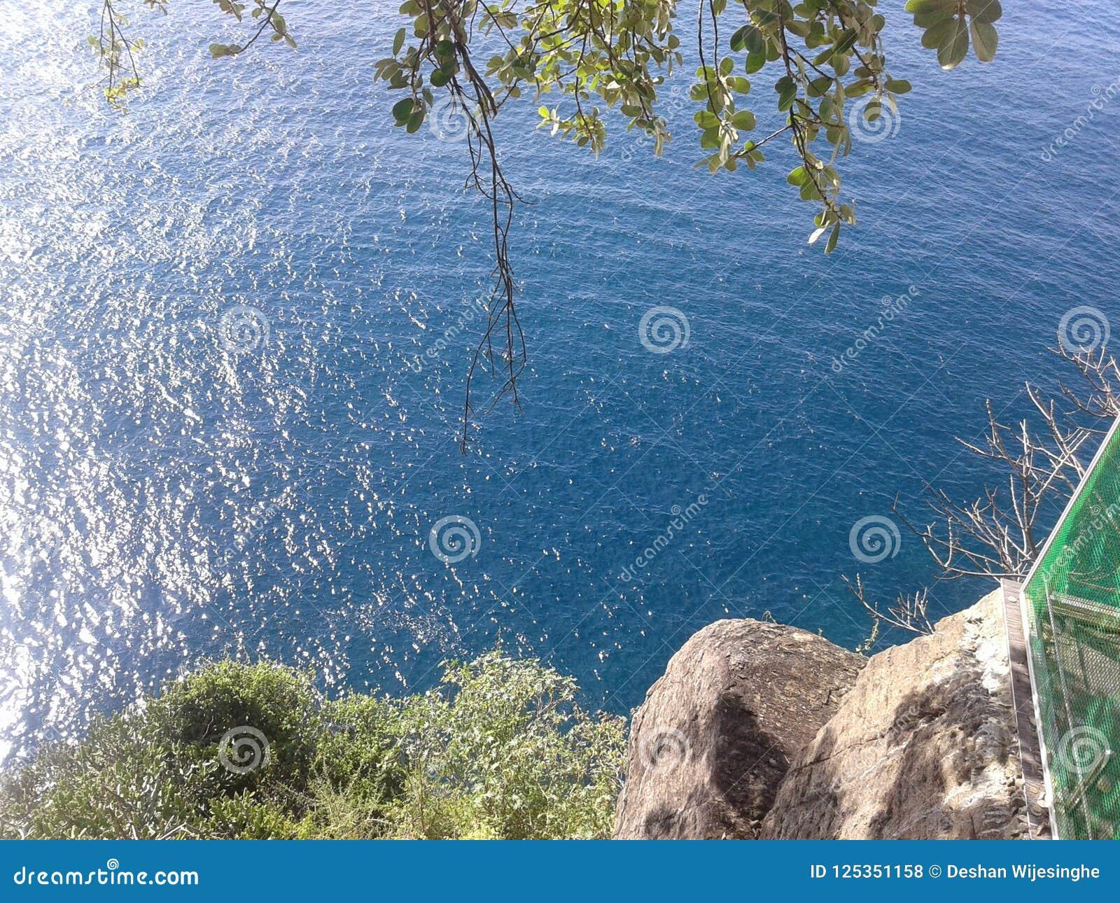 Kyla det blåa havet under träd