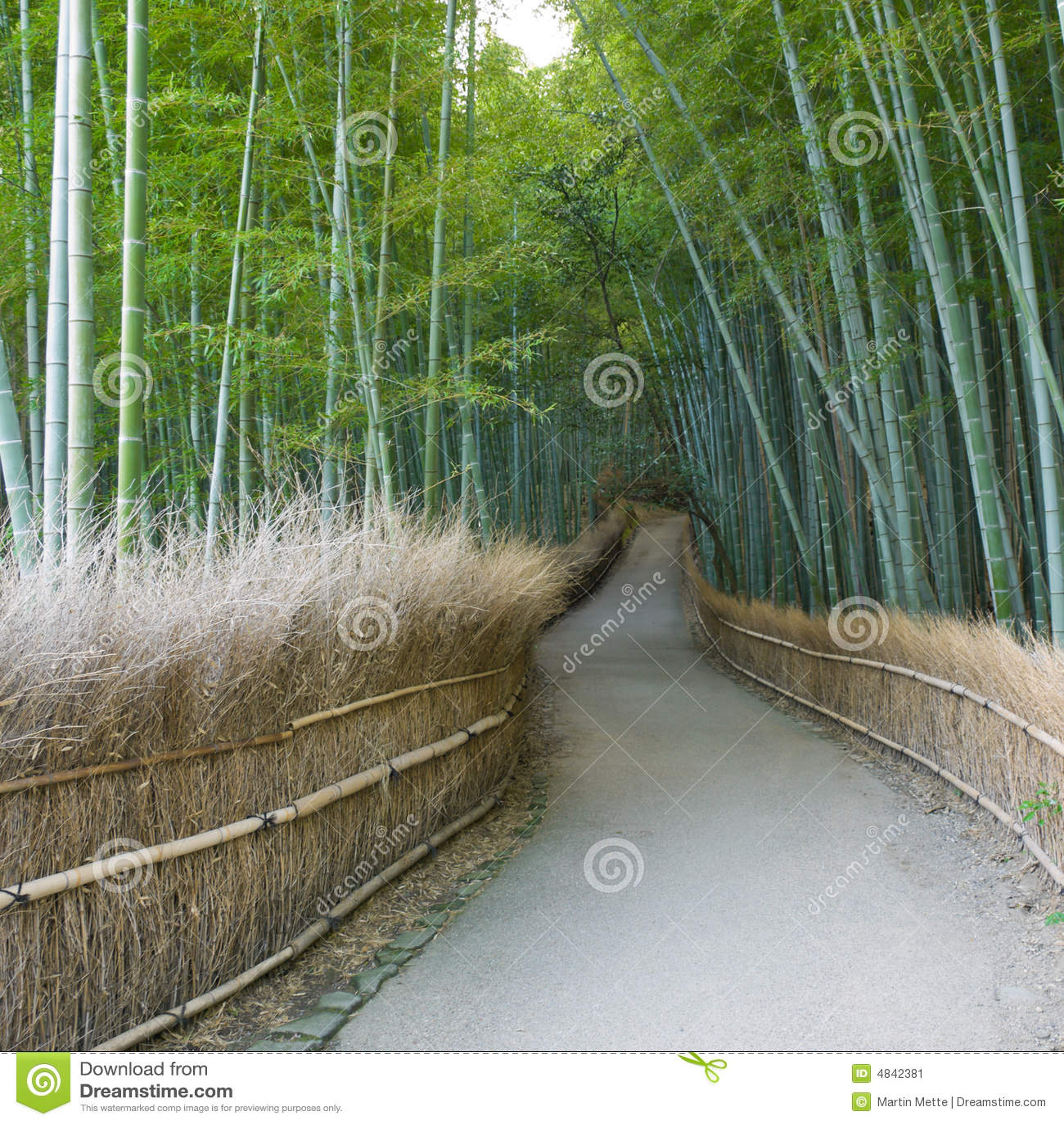 forest grove buddhist personals Jo sóc ex-votant de ciu, sempre fins les properes són experiències personals que no podem transmetre del tot  pleasant grove auto insuratce.