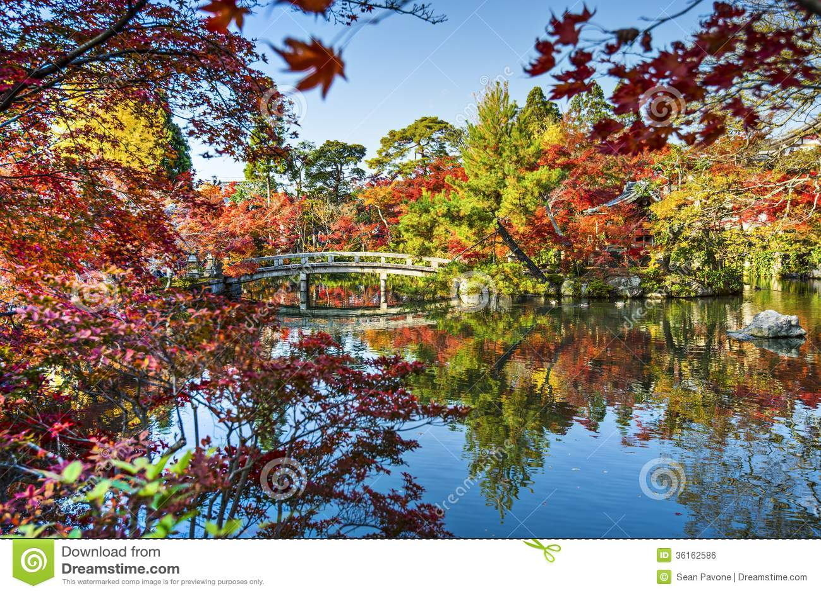 Kyoto Gardens Royalty Free Stock Image - Image: 36162586
