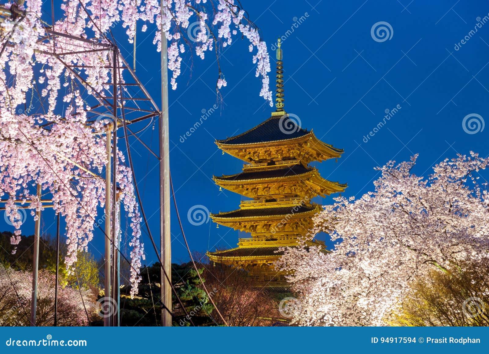 Kyoto, Japonia przy Toji pagodą z czereśniowym blossomin ligh up w nig