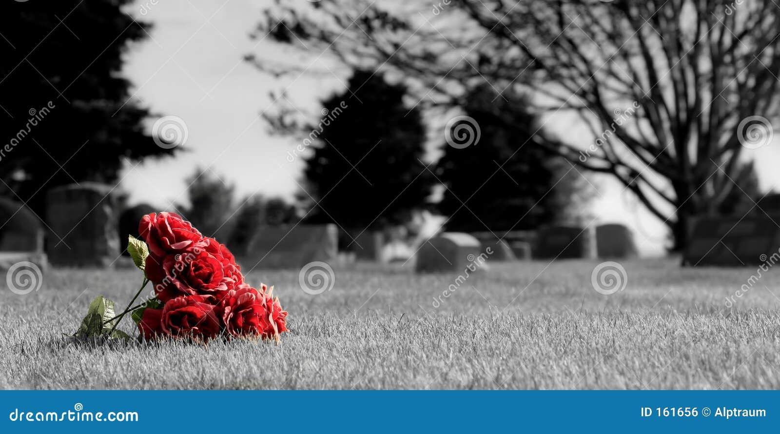 Kyrkogårdblommor