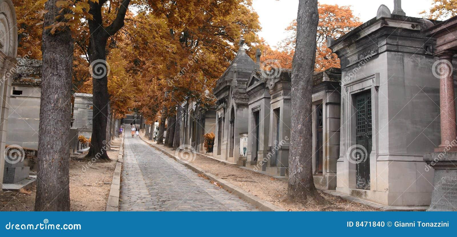 Kyrkogårdlachaisepere