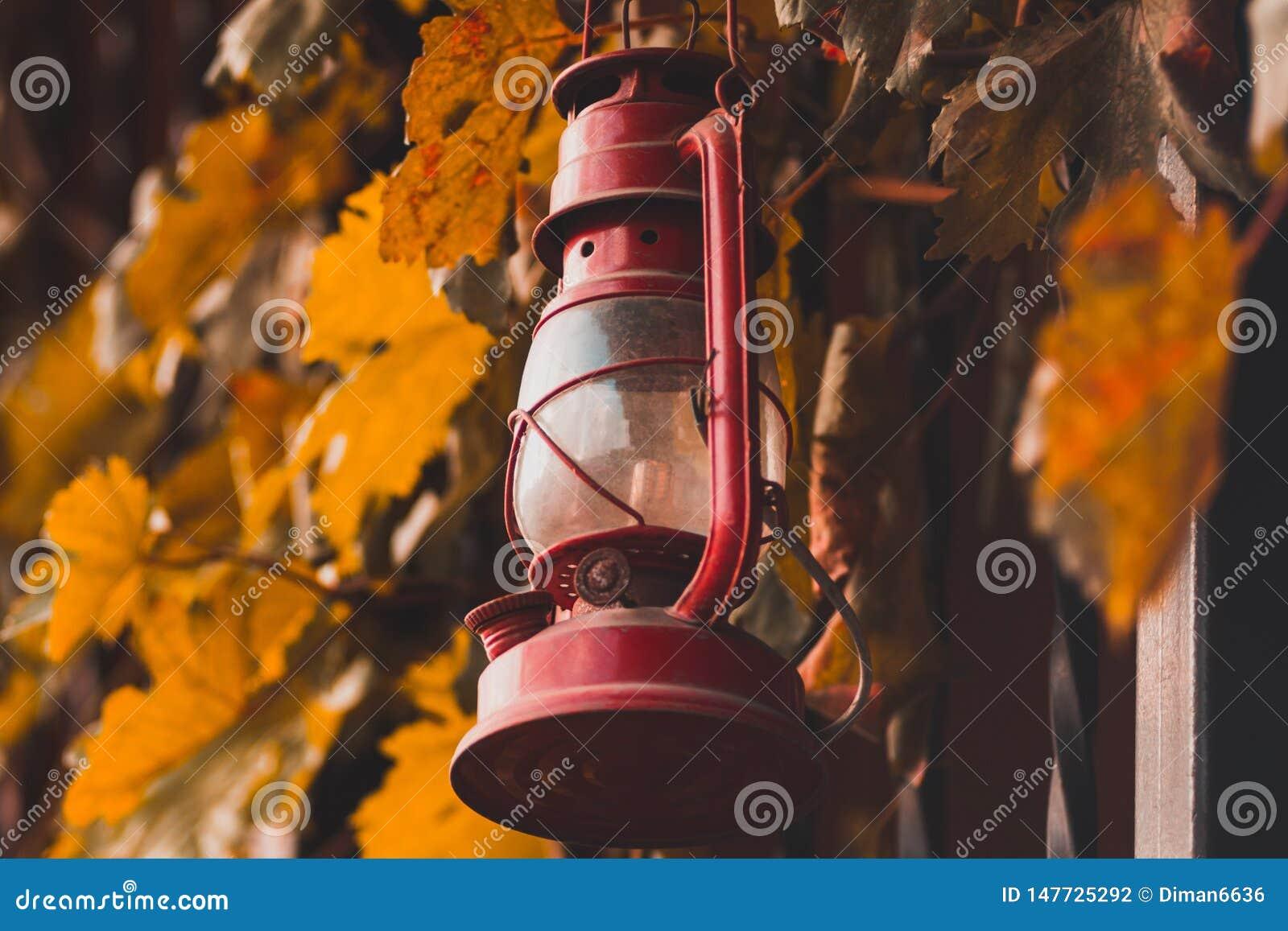 Lámpara de keroseno roja en la cerca con las hojas