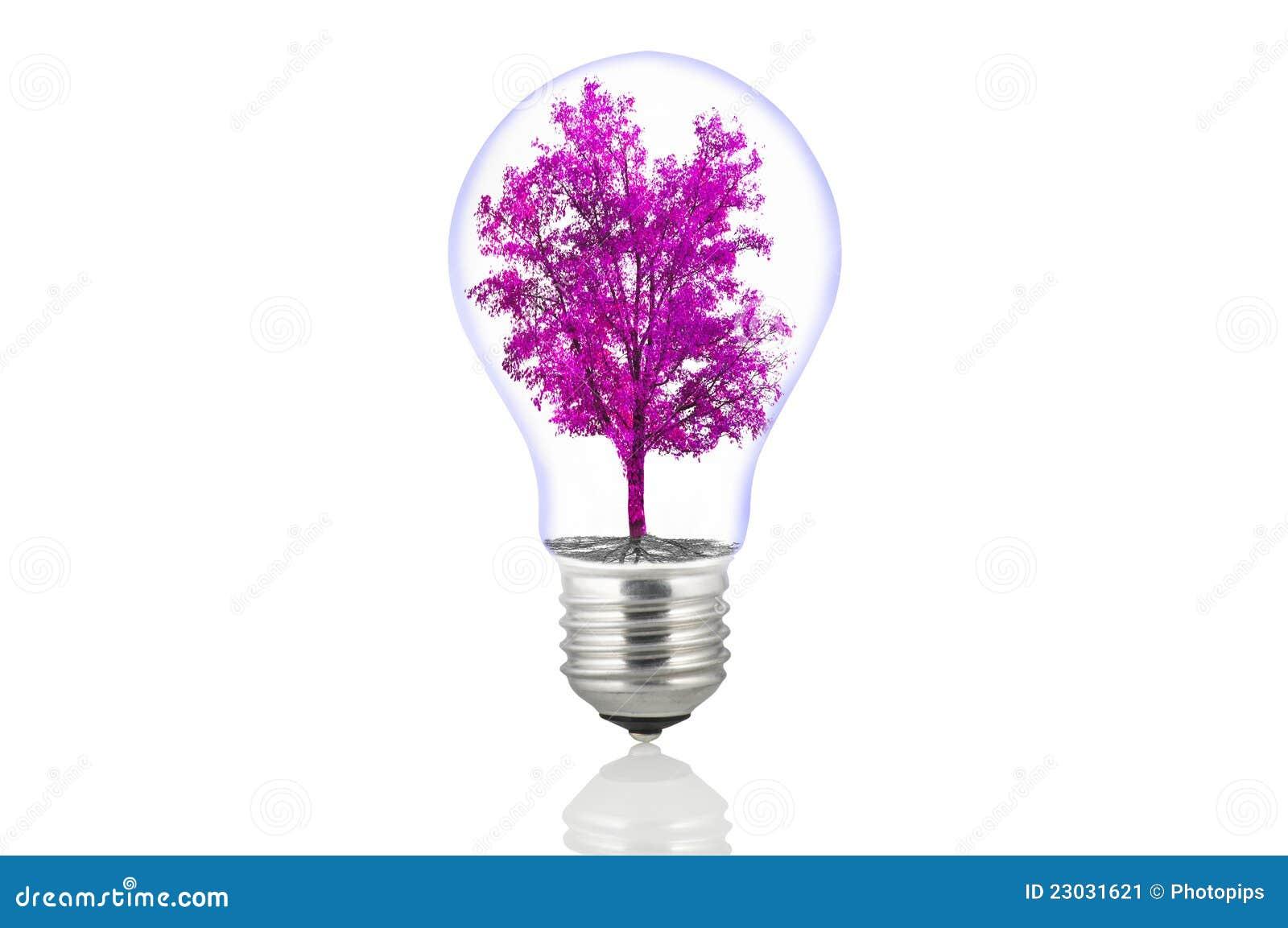 Lámpara de la energía de Eco