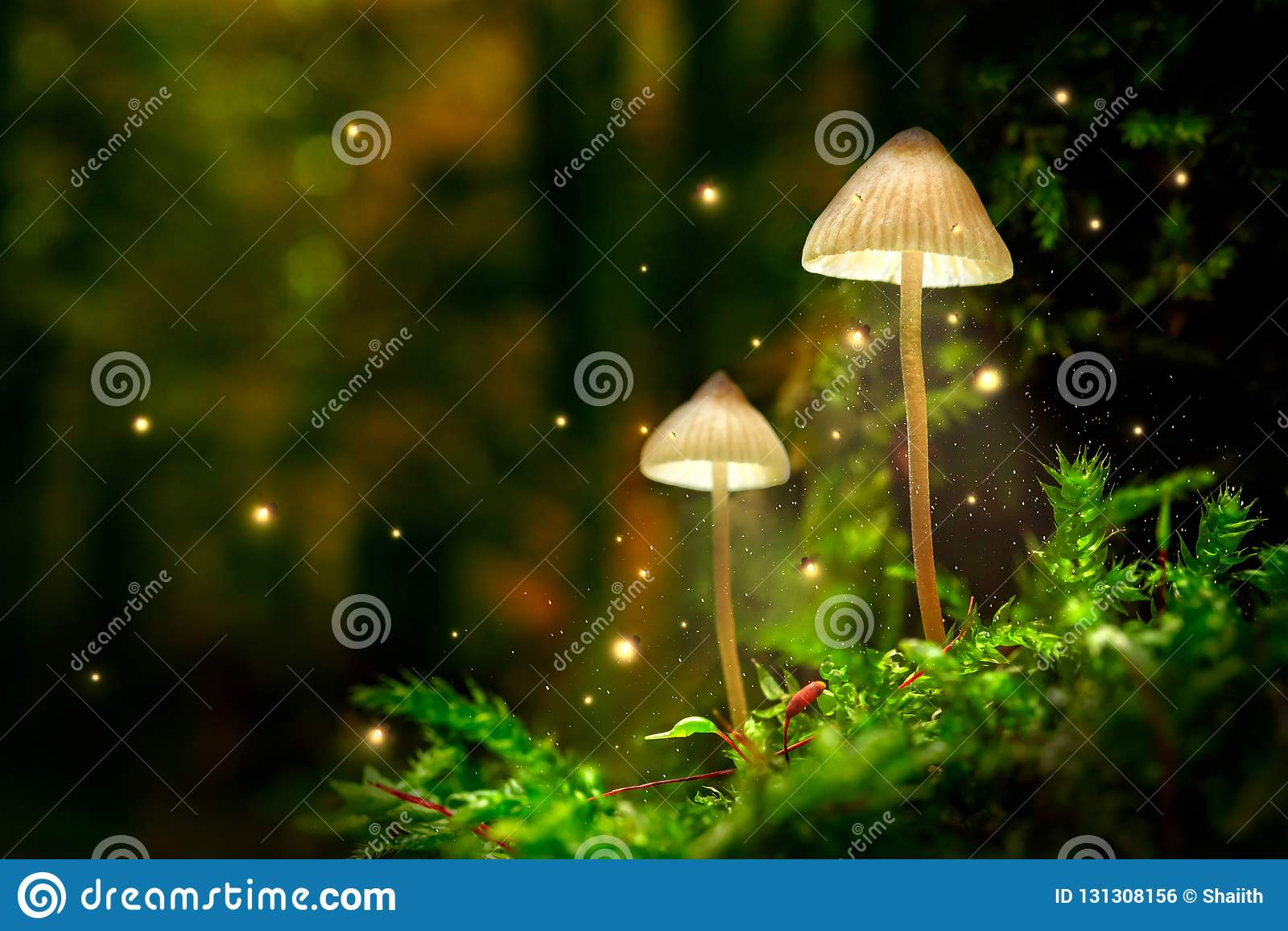 Lámparas de la seta que brillan intensamente con las luciérnagas en bosque mágico