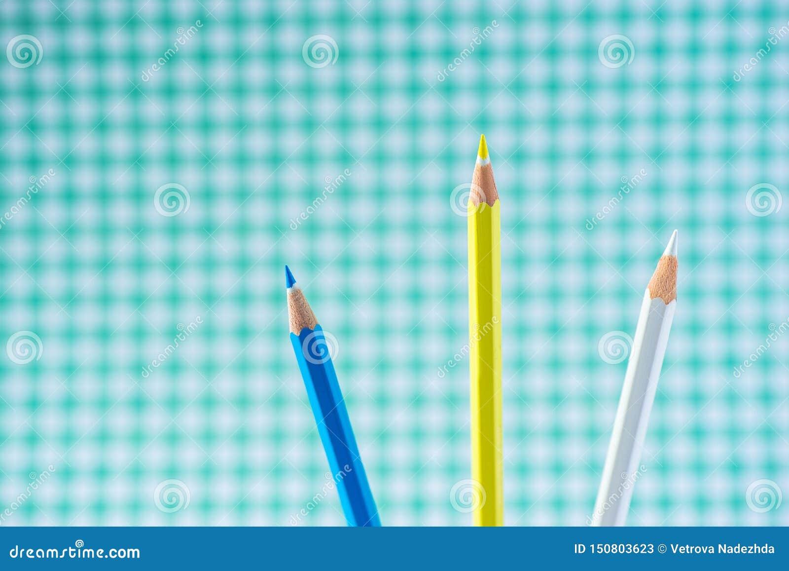 Lápices coloreados en un fondo en colores pastel a una jaula con el espacio para el texto