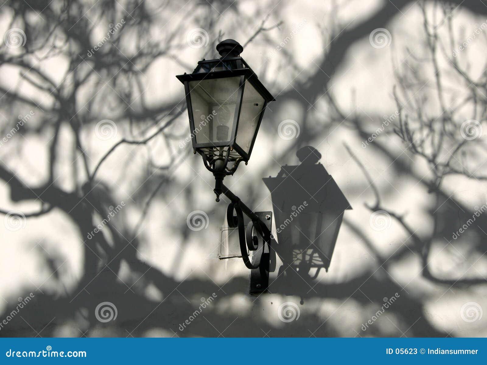 A lâmpada