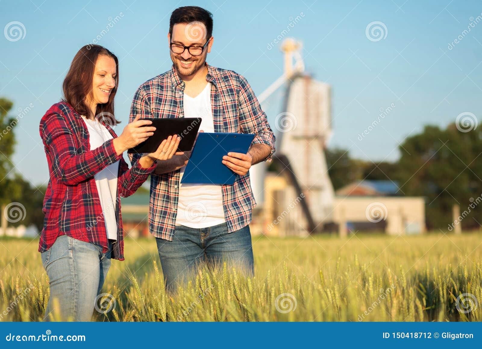 Lächelnder glücklicher junger Mann zwei und weibliche Agronomen oder Landwirte, die auf einem Weizengebiet sprechen