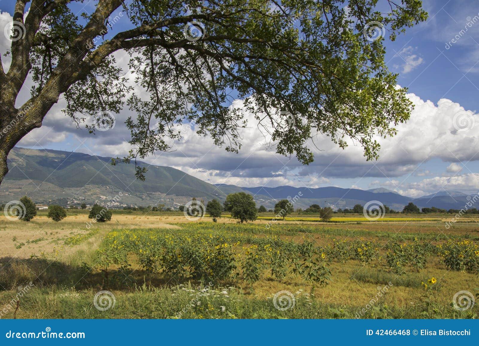 Ländliches Gebiet nahe Trevi in Umbrien