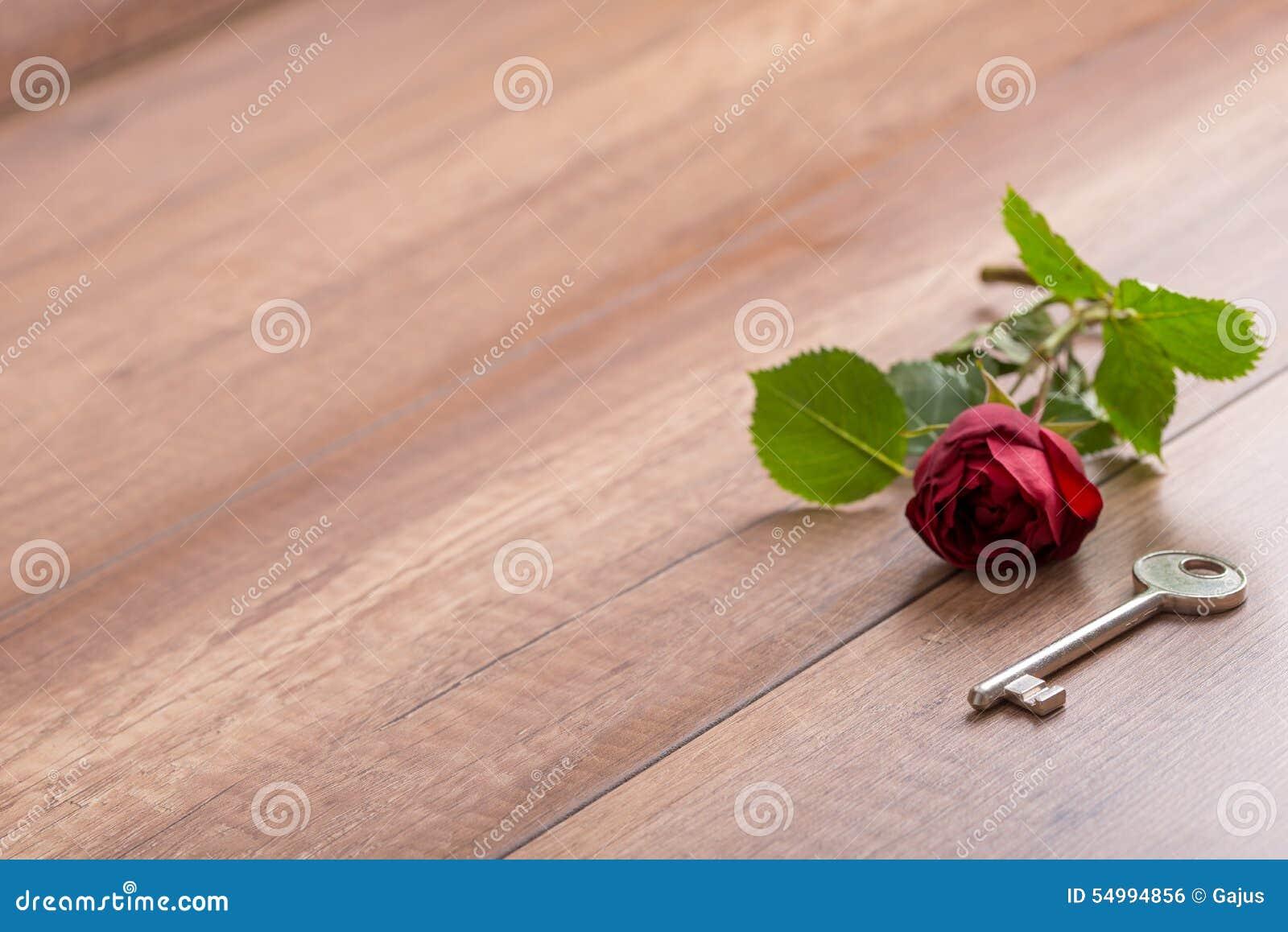 Länge Stemmed röd ros och tangent på träyttersida