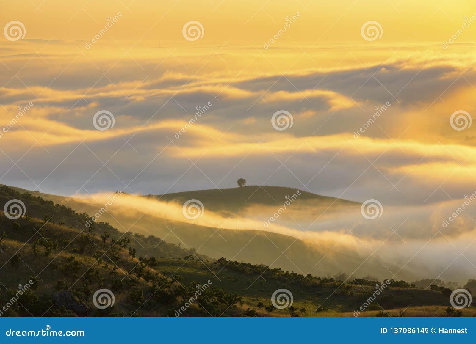 Låga moln gulnar kulört på soluppgång