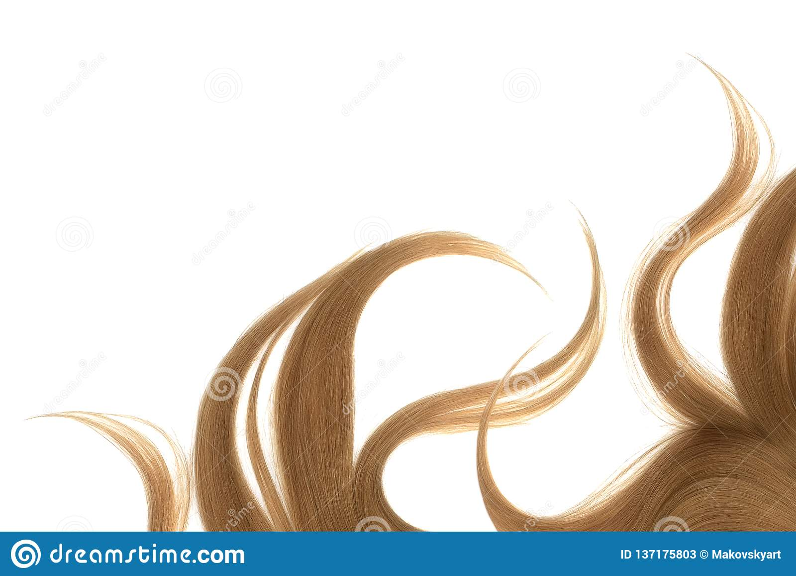 Långt ovårdat brunt hår som isoleras på vit bakgrund