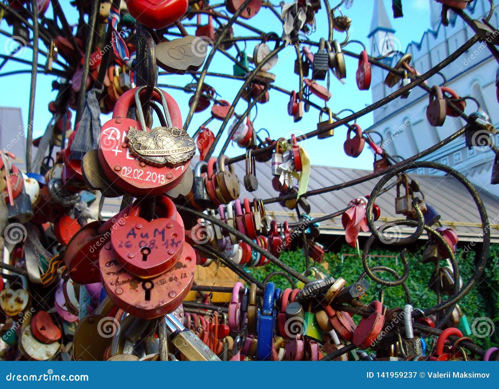 Lås av förälskelse och troheten på de gifta sig träden av lycka