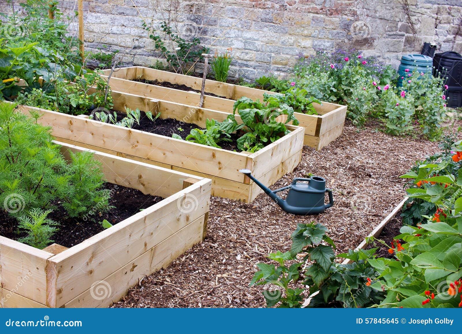 thumbs.dreamstime.com/z/légume-et-jardin-d-agrément-rustiques-de-pays-avec-les-lits-la-pelle-la-boîte-d-arrosage-et-le-composters-augmentés-57845645.jpg