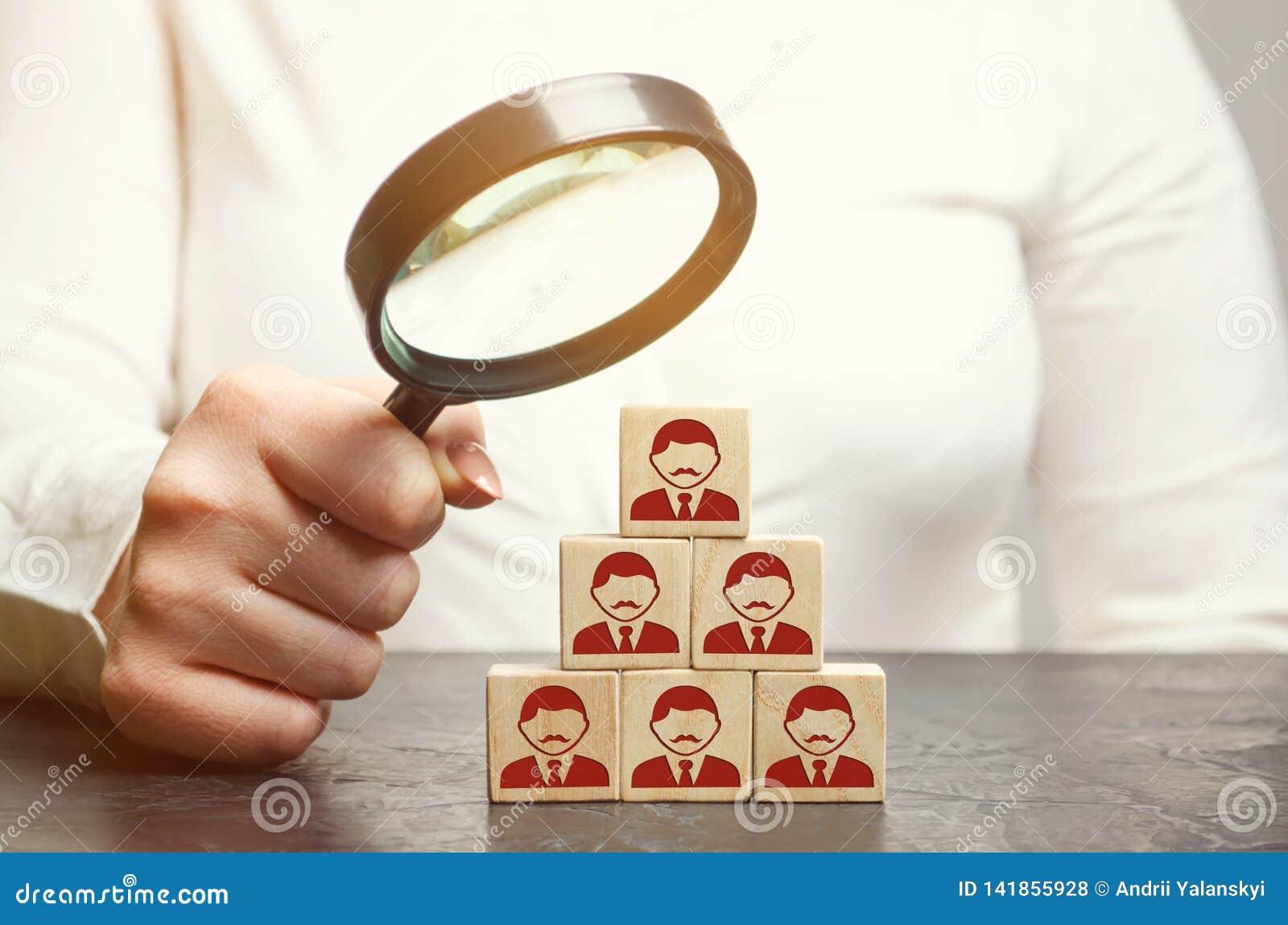 Líder de la mujer en busca de nuevos empleados y especialistas Selección y gestión de personales en un equipo El jefe construye a