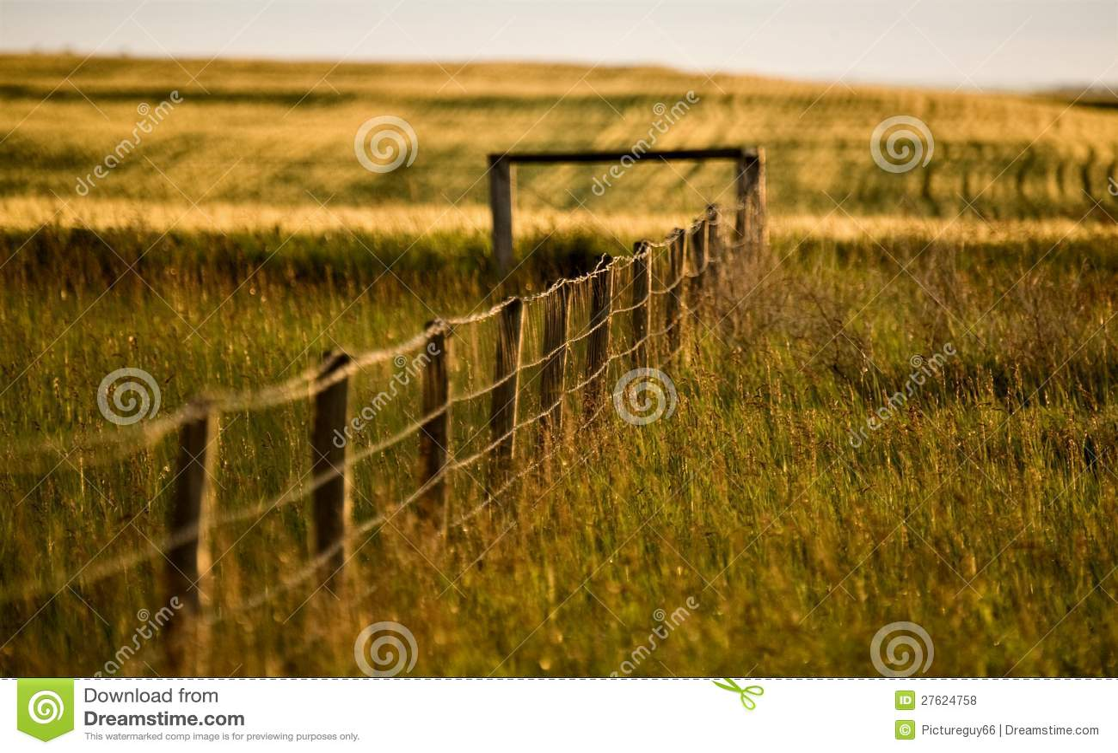 Línea de cerca de la pradera