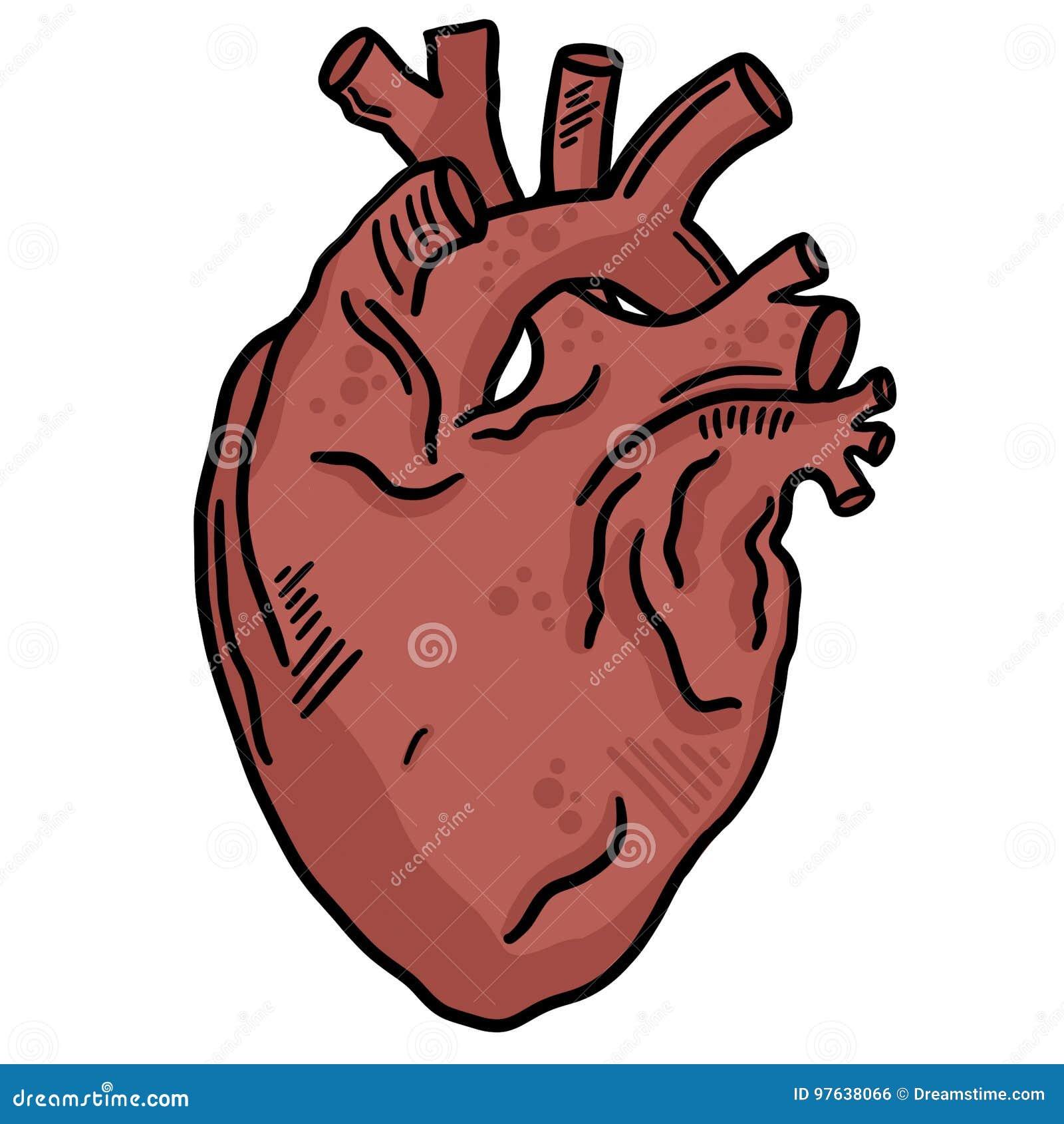 Línea de corazón humana Art Vector Illustration Clip Art