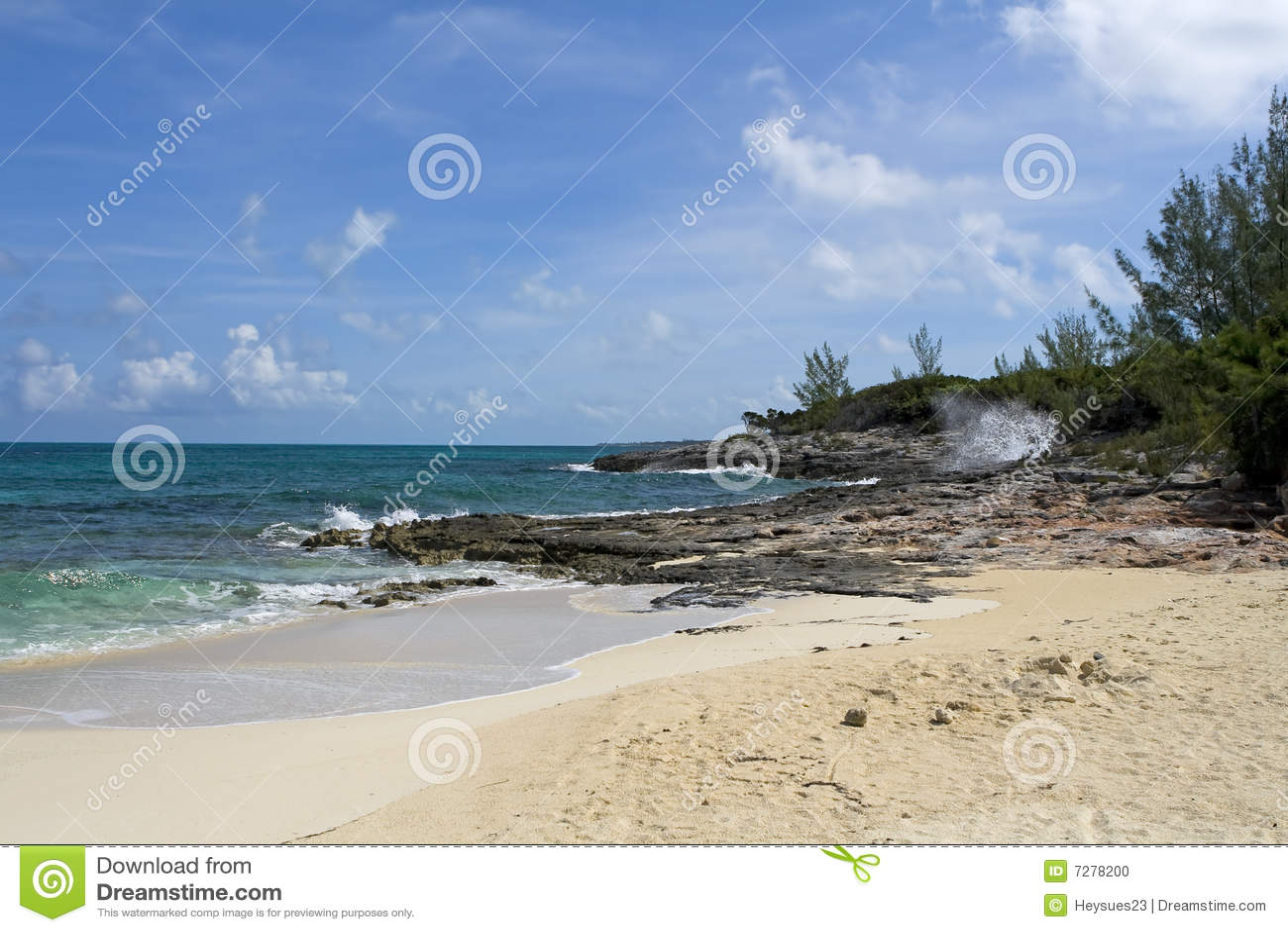 Línea de la playa tropical