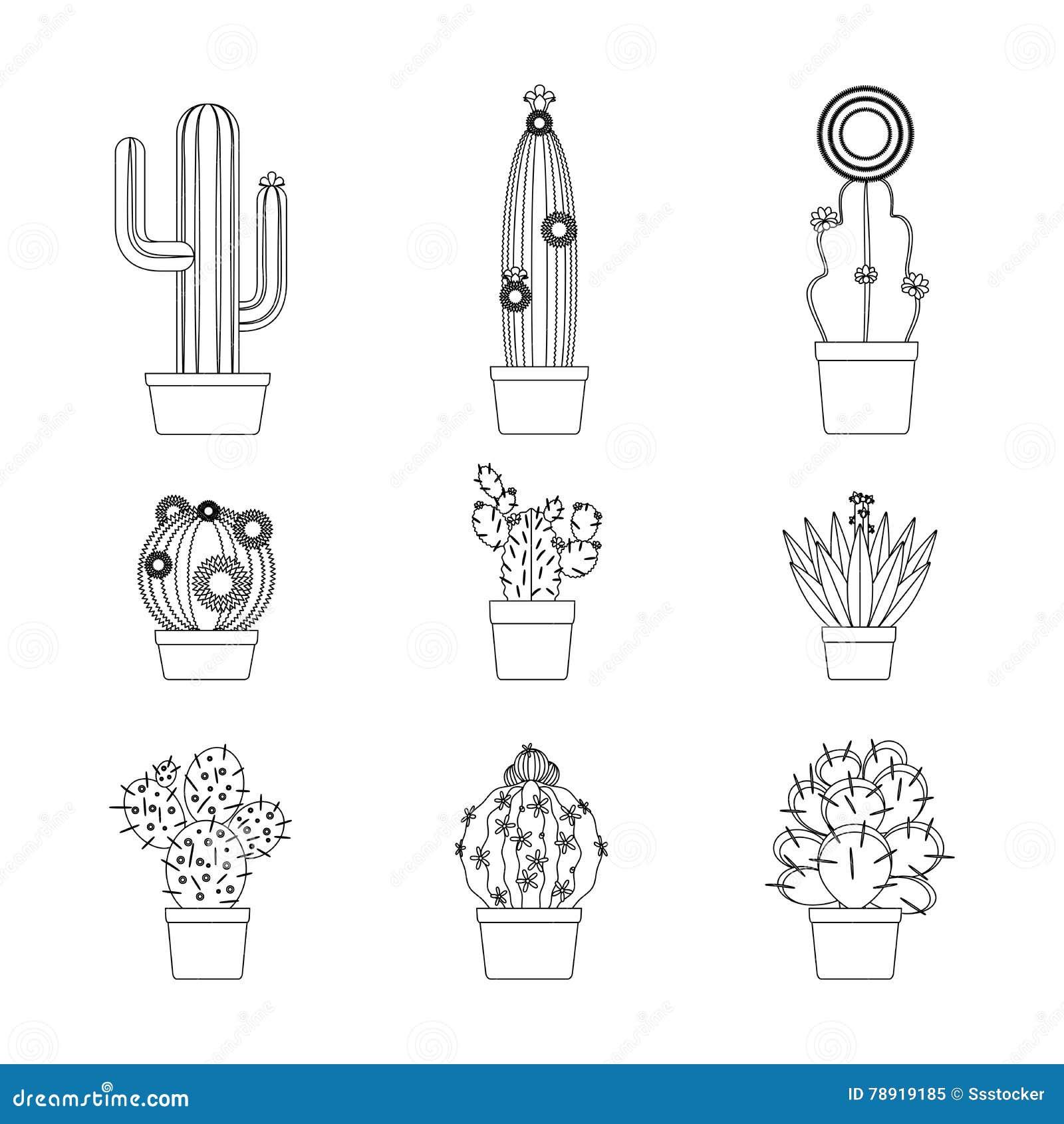 Línea Fina Sistema Del Cactus Del Icono Ilustración del Vector ...