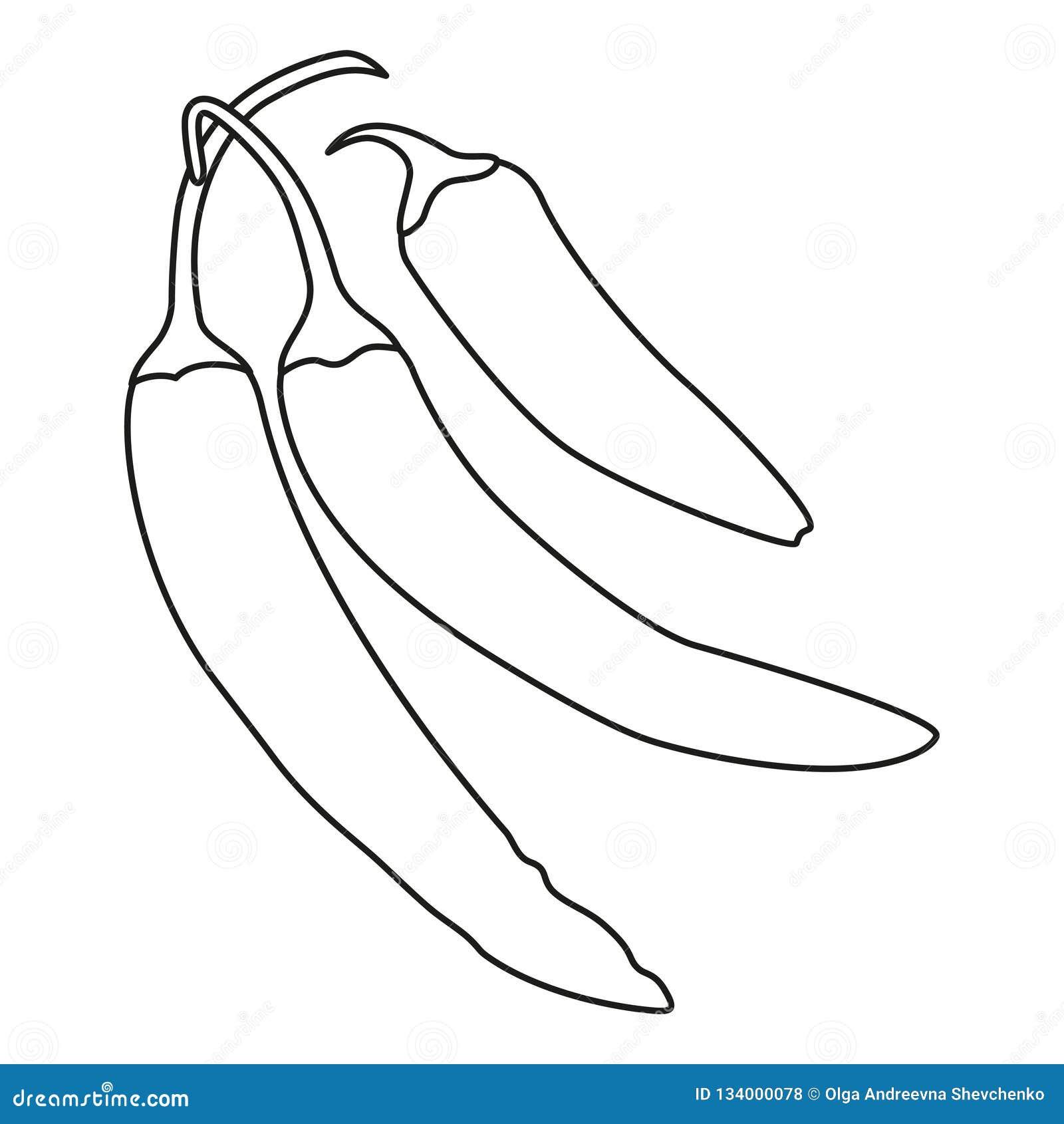 Línea pimienta de chiles calientes blanco y negro del arte Condimento  picante de la comida Ejemplo del vector del tema de México para la  decoración del ... c65ae8d2012