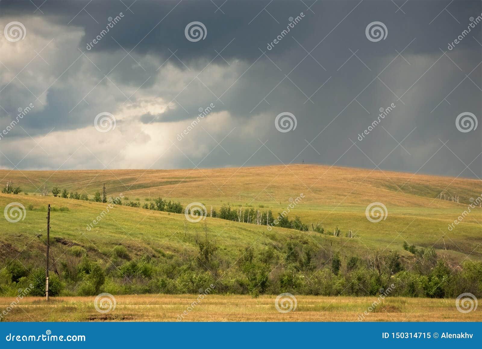 Líneas tempestuosas grises del cielo y de la lluvia sobre campos amarillos
