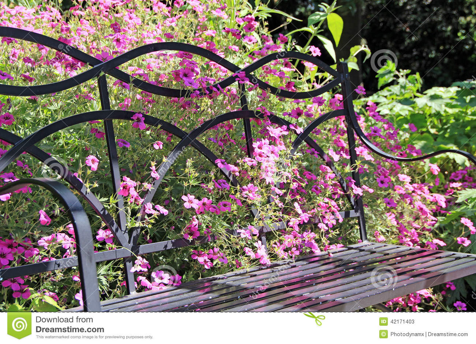 Lösa blommor och trädgårds- bänk