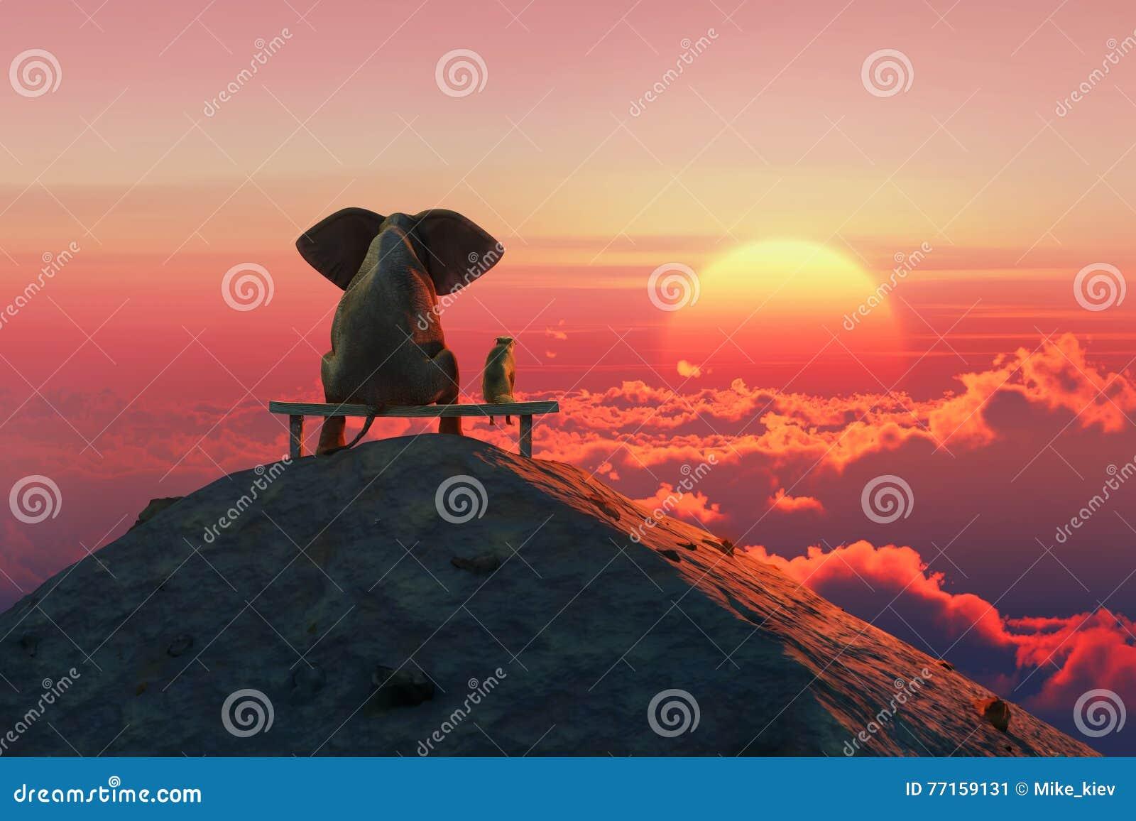 L éléphant et le chien se reposent sur un dessus de montagne