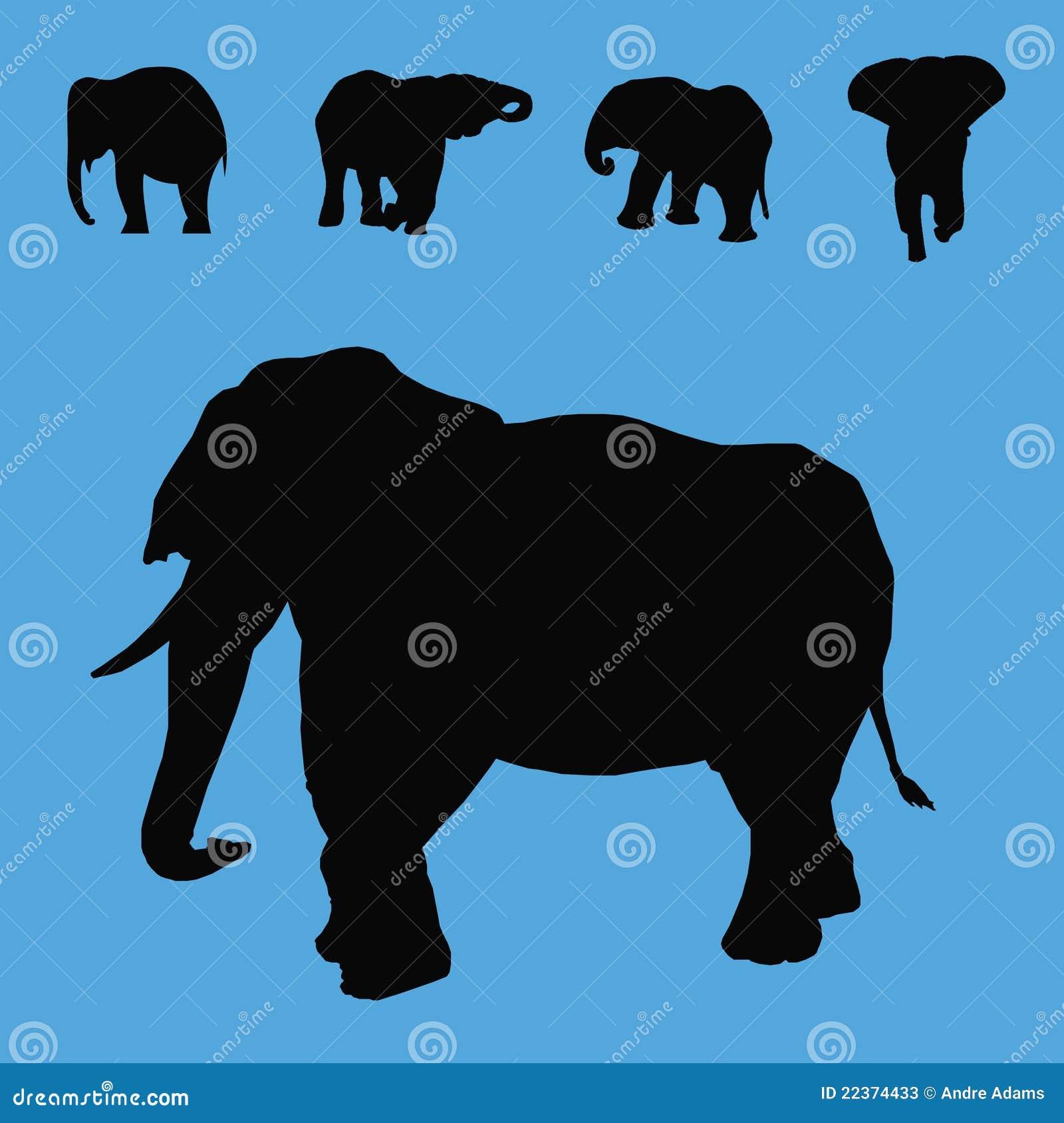 L éléphant silhouette le ramassage
