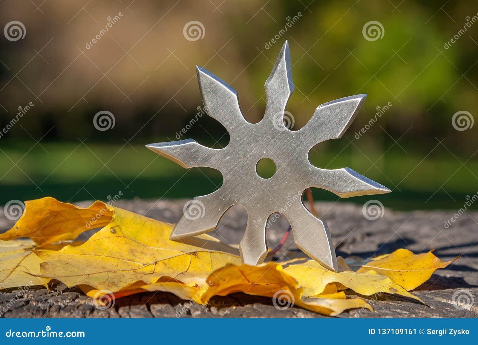 L étoile de lancement de Shuriken, arme froide de ninja japonais traditionnel a collé à l arrière-plan en bois