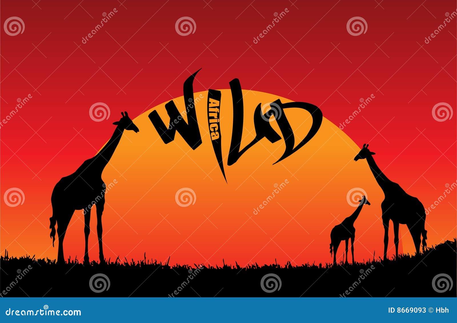 L Afrique sauvage