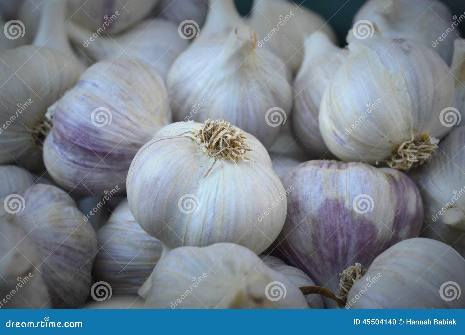 L aglio di sp