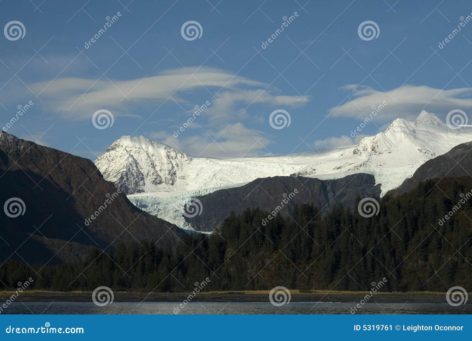 Download L'Alaska, Penisola Di Kenai Immagine Stock - Immagine di paesaggi, alberi: 5319761