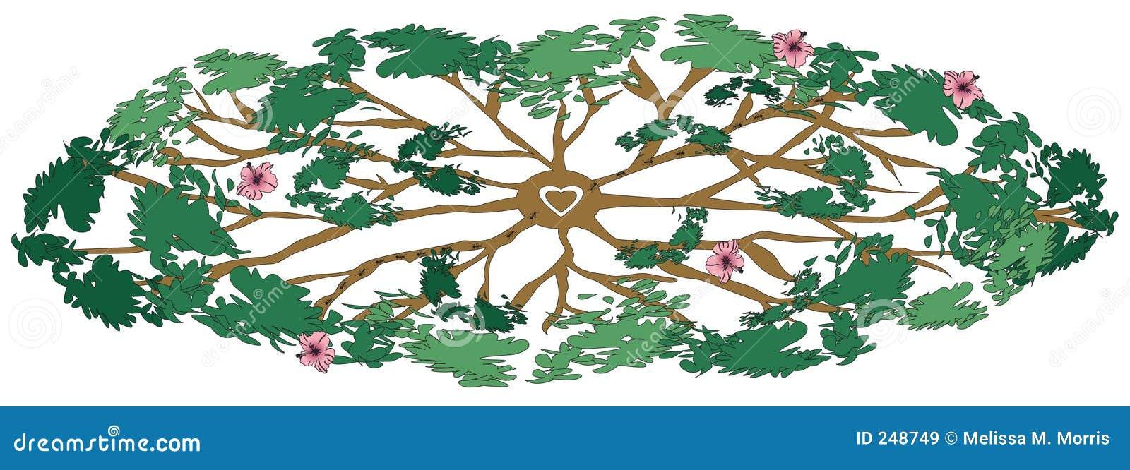 L albero curativo