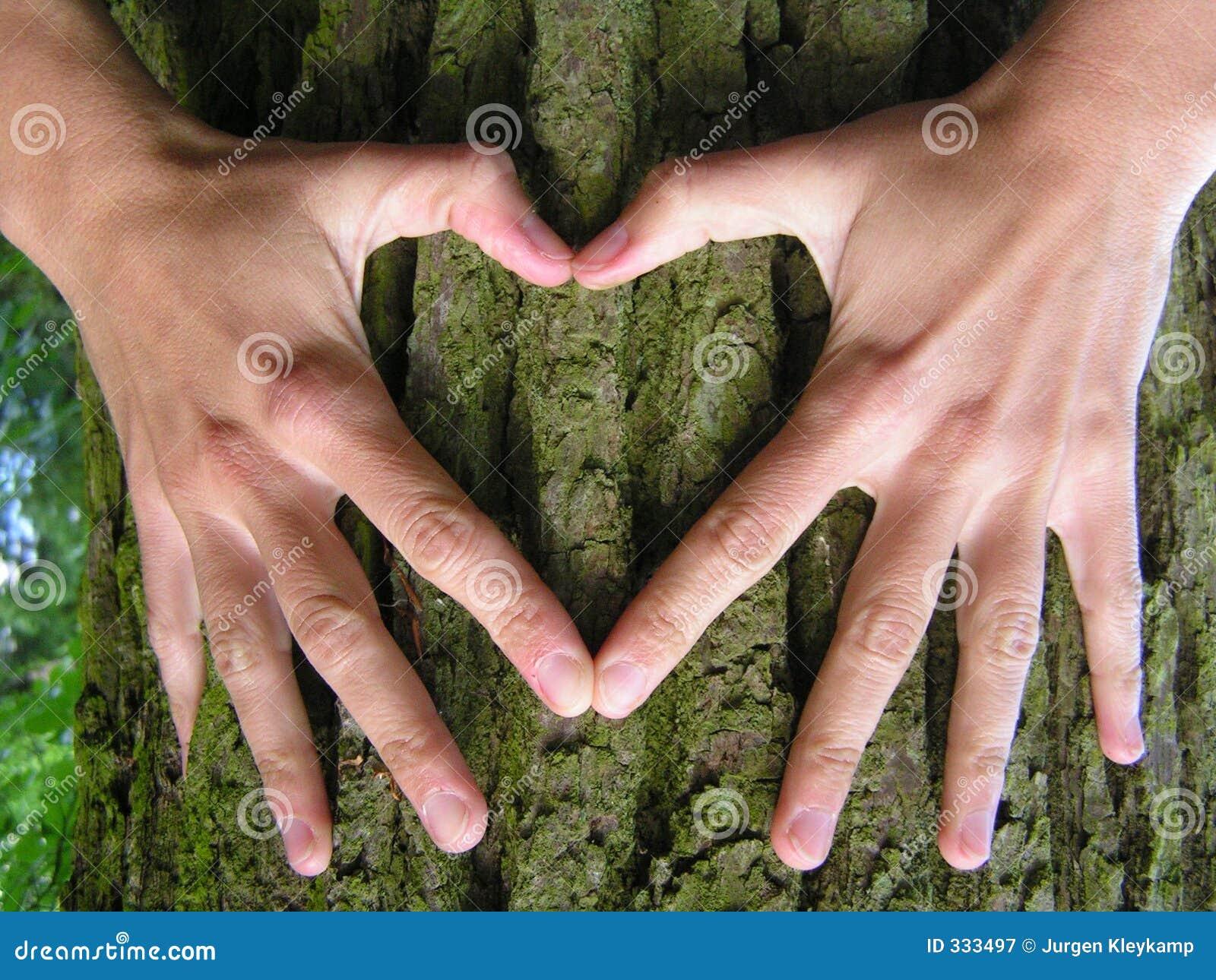 L amour est comme un arbre qui se développe