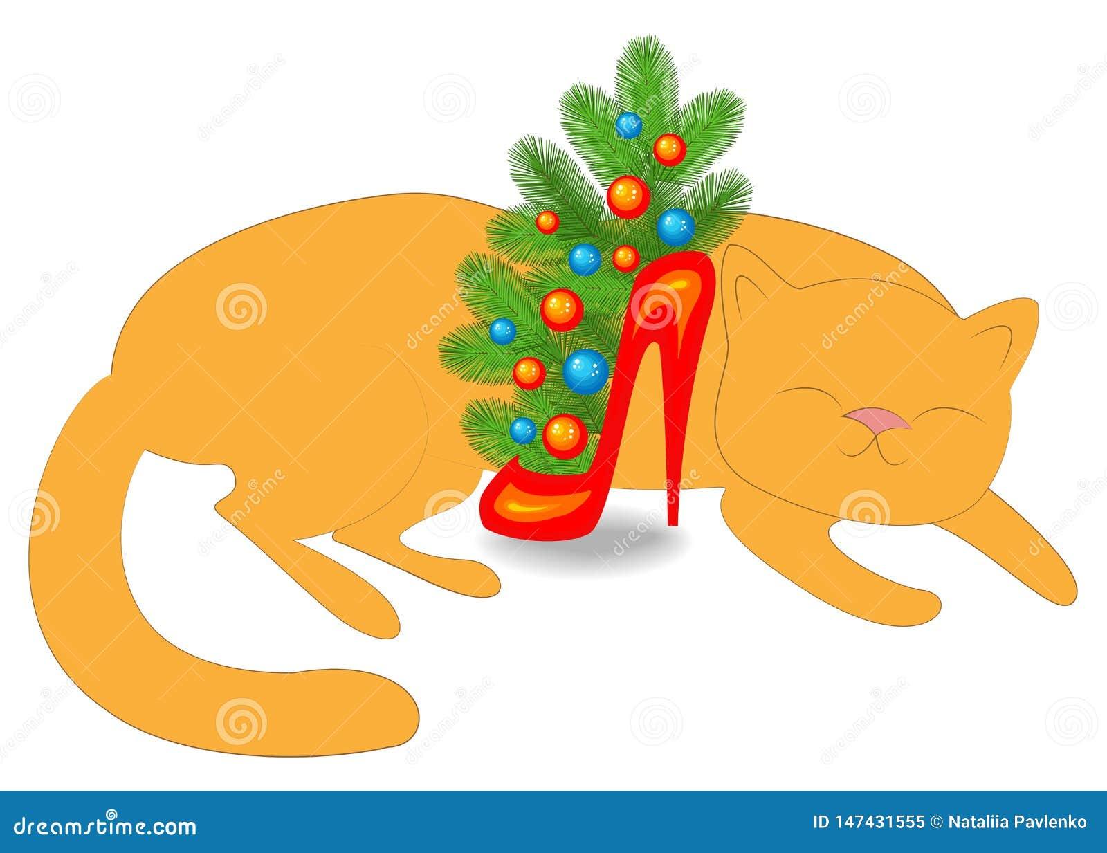 L animal familier dort Près de la composition en nouvelle année s du chat s, branches de sapin dans une chaussure rouge Arbre de