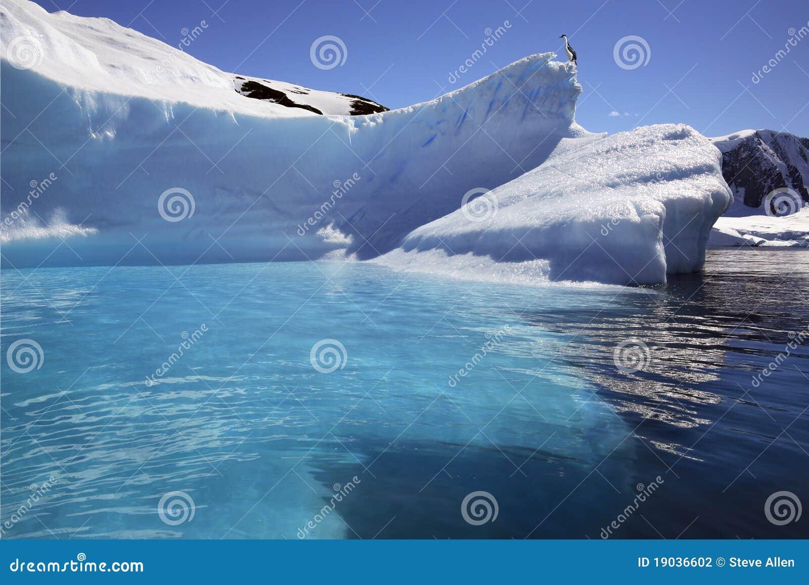 L Antarctique - iceberg dans le compartiment de Cuverville