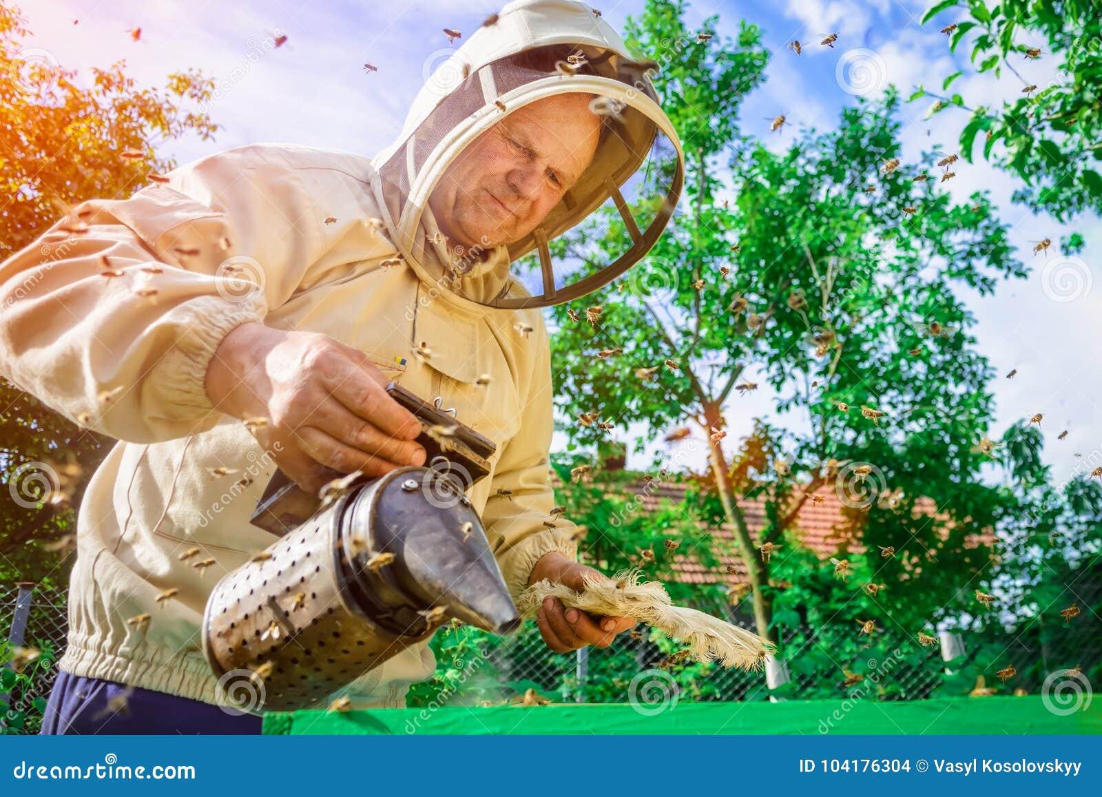 L apiculteur travaille avec des abeilles près des ruches Apiculture