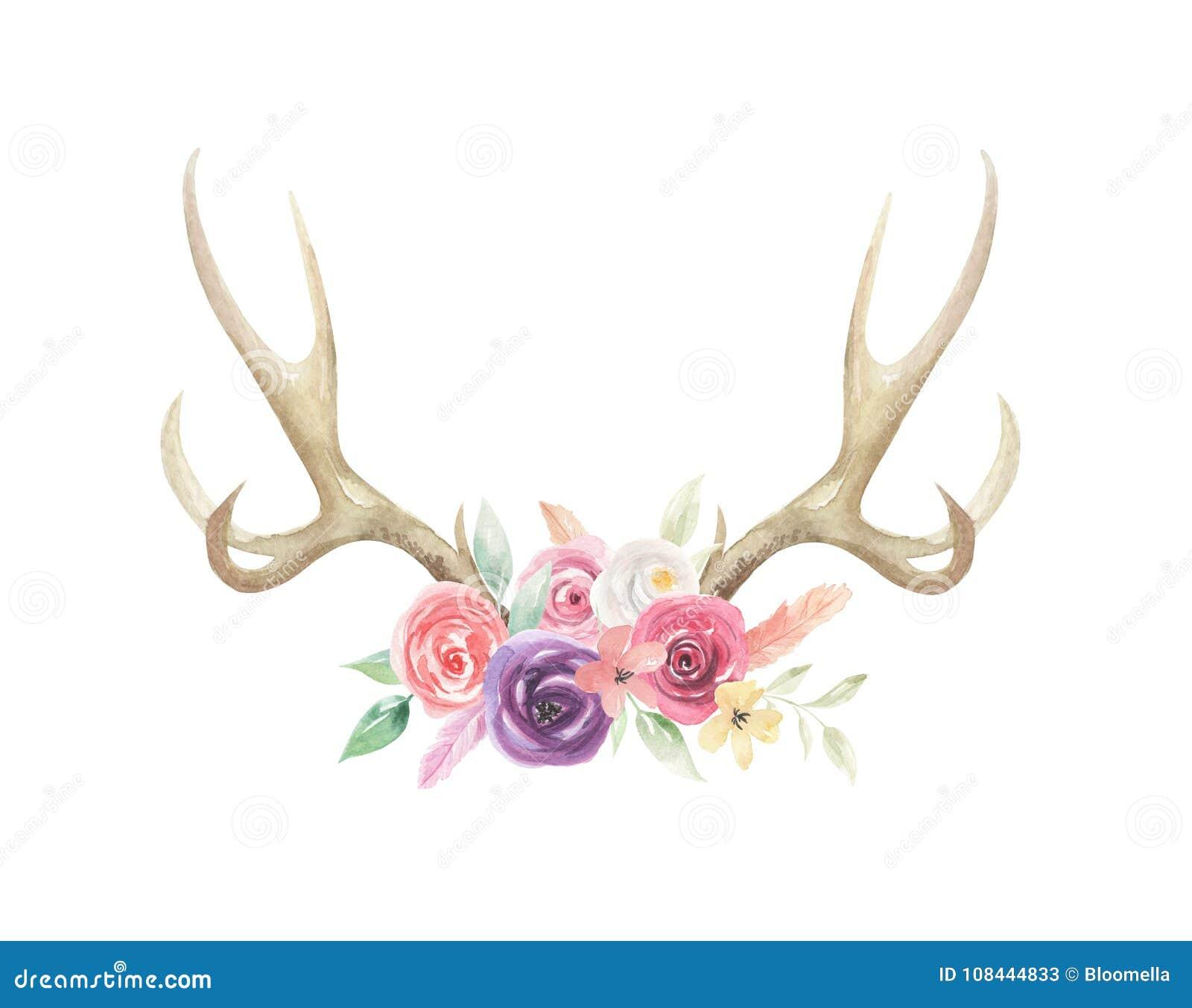 L aquarelle fleurit l os floral de klaxons de mâle de cerfs communs d andouillers peint
