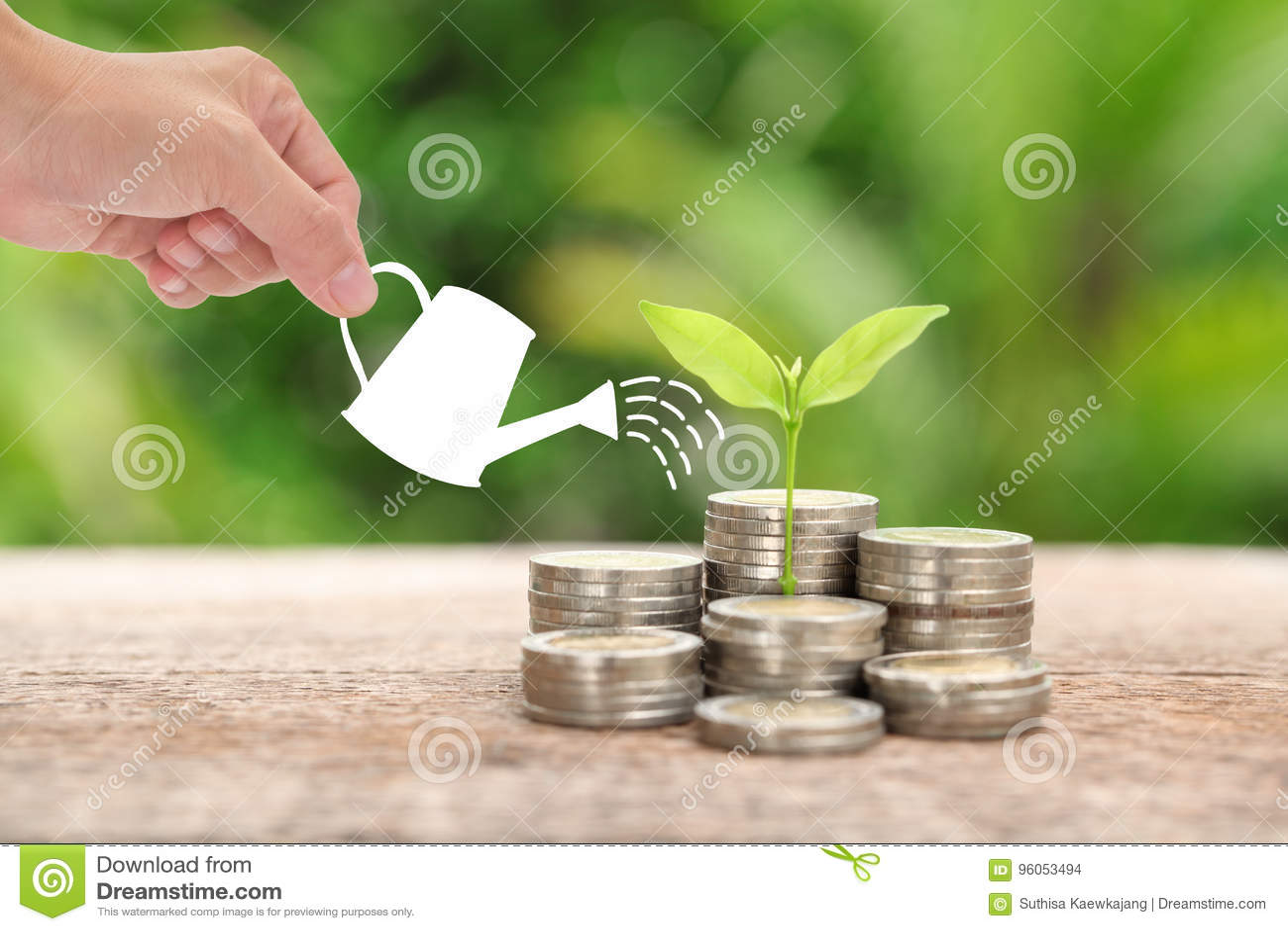 L argent et l usine avec la main de femme tiennent la boîte d arrosage et l arbre, Sav