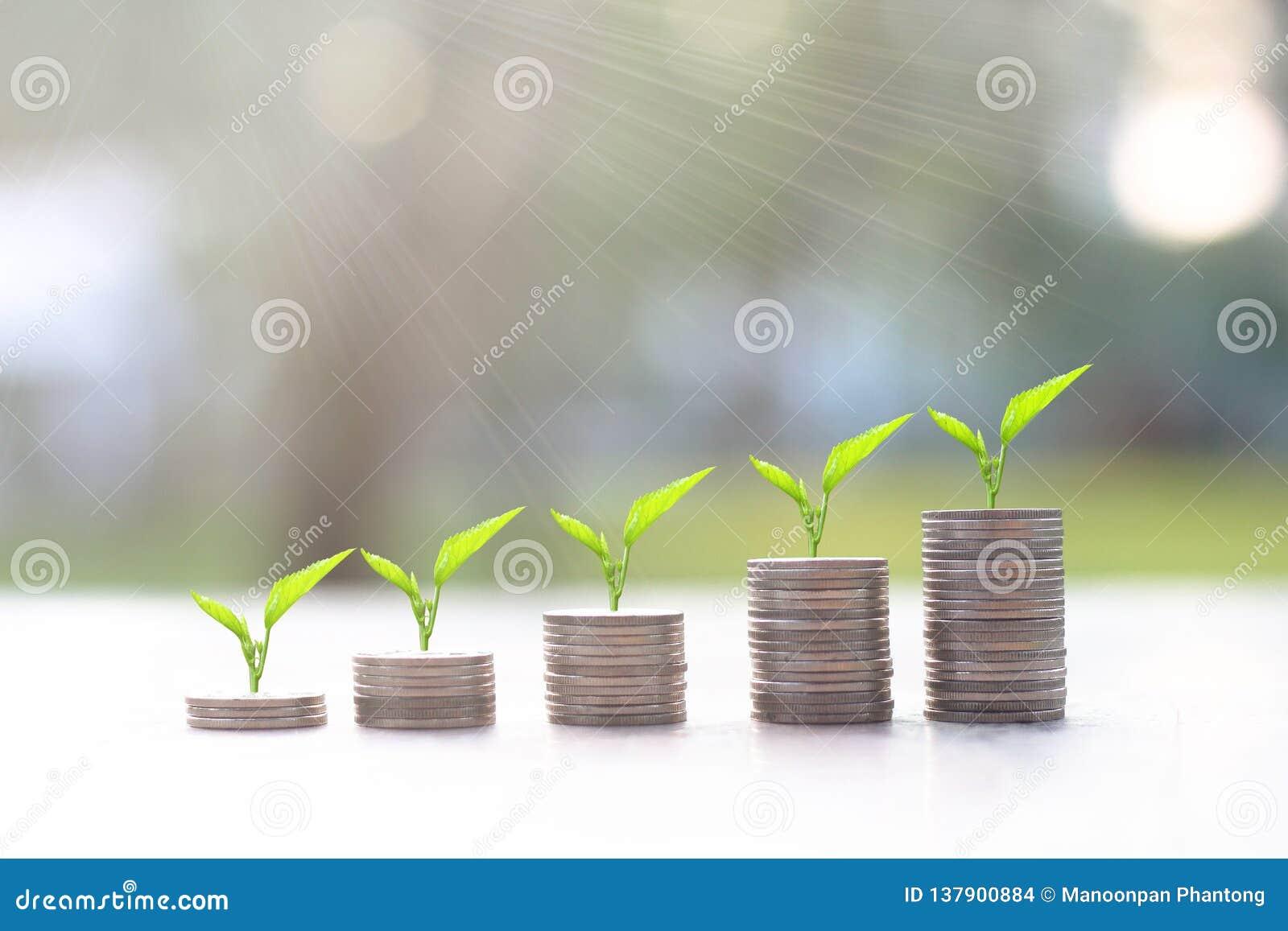 L argent invente des piles avec l arbre s élevant sur le dessus avec la lumière du soleil Concept d argent d économie développeme