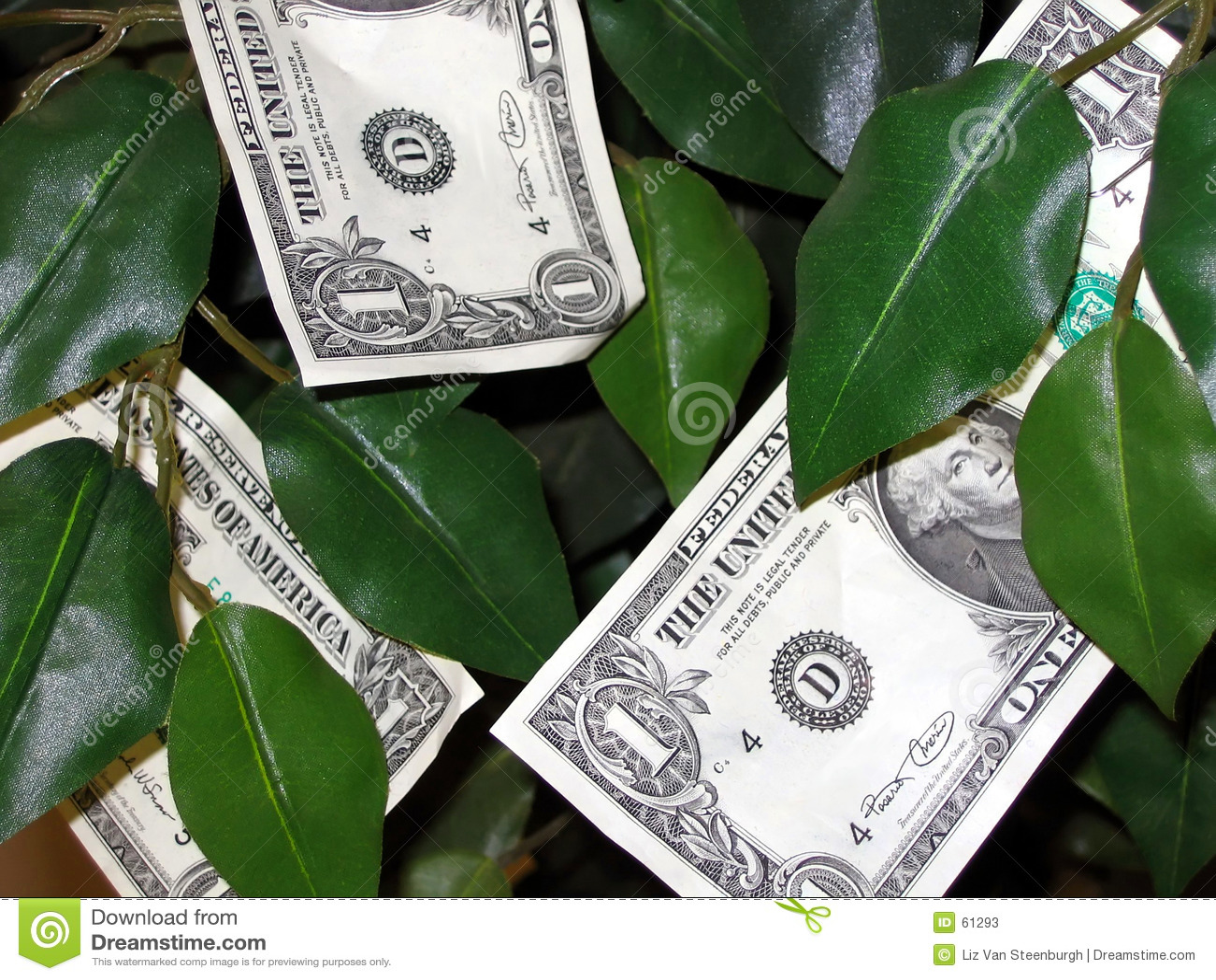 Download L'argent Se Développe Sur Des Arbres ! Image stock - Image du conceptuel, concept: 61293