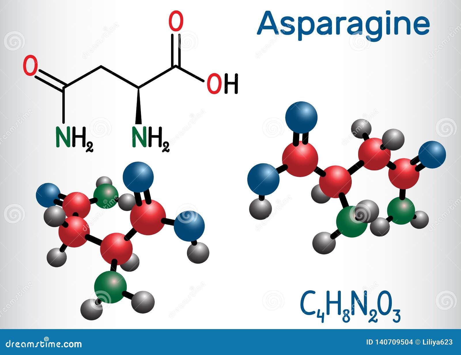 L-asparagina da asparagina, Asn, molécula do ácido aminado de N IS-IS usou-se na biosíntese das proteínas Produto químico estrutu