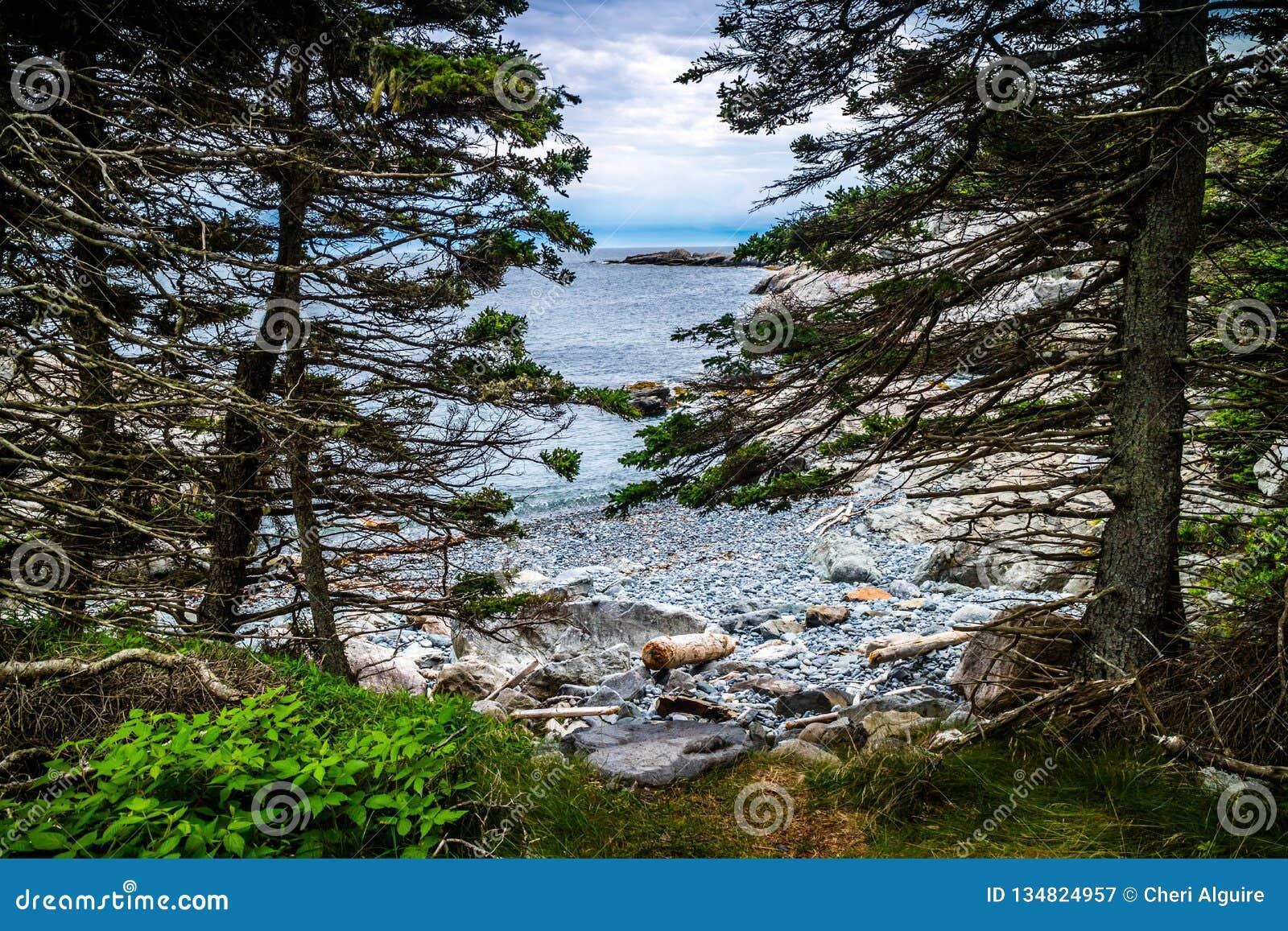 L Au adorabile Haut di Duck Harbor Isle nell acadia parco nazionale, Maine