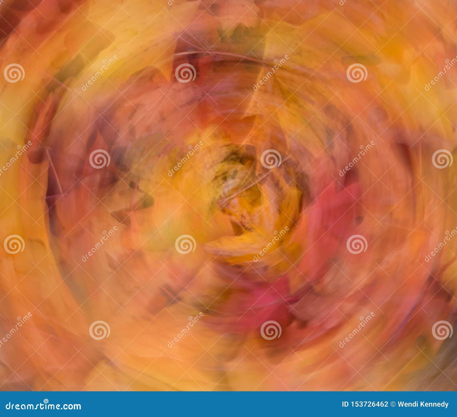 L automne coloré part dans une conception abstraite circulaire