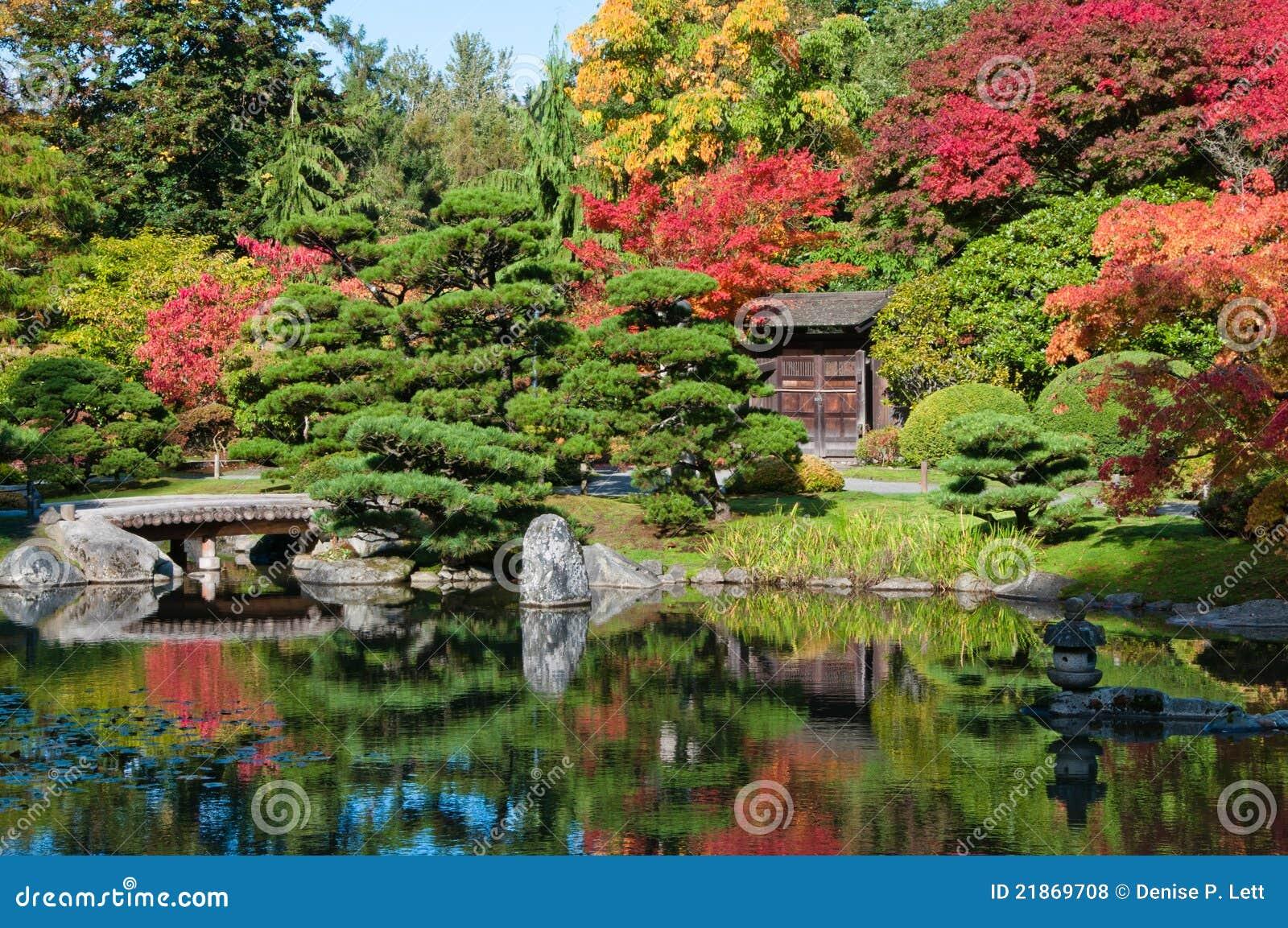 l 39 automne colore le jardin japonais photos libres de droits image 21869708. Black Bedroom Furniture Sets. Home Design Ideas