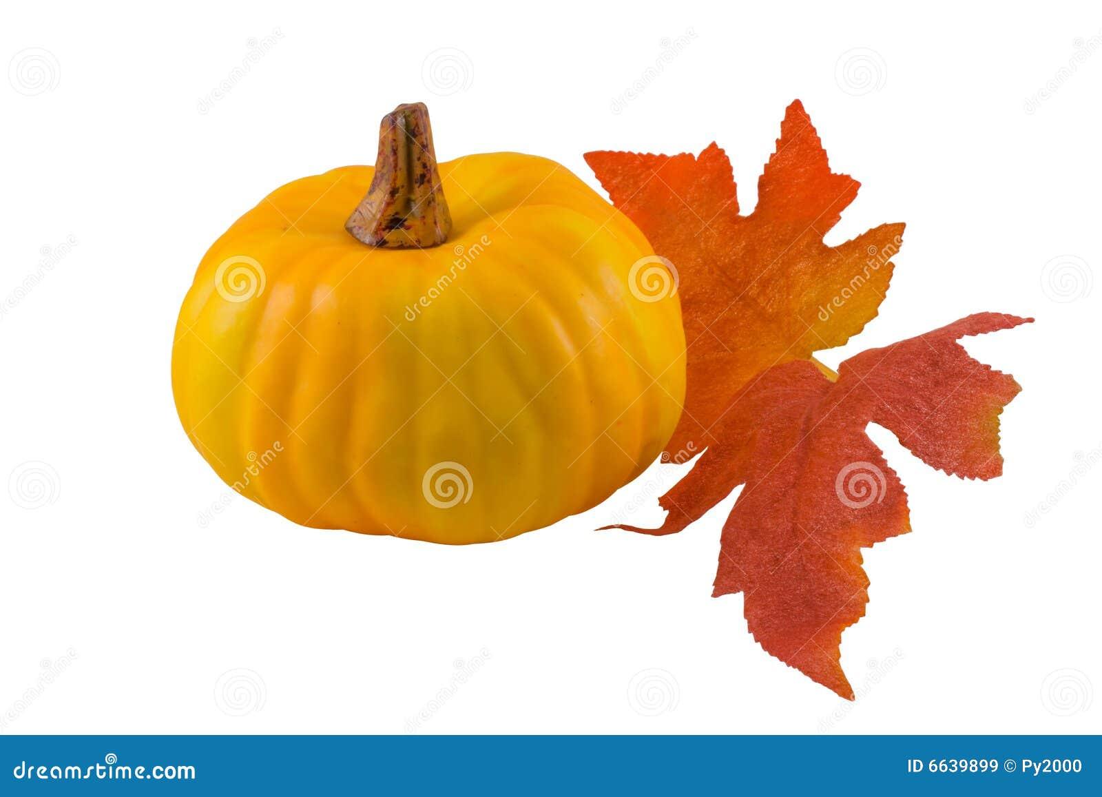 L automne laisse le potiron