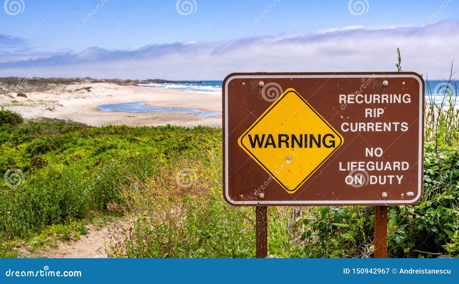 L avertissement concernant les courants de déchirure périodiques et aucun maître nageur en service a signalé sur le littoral de l